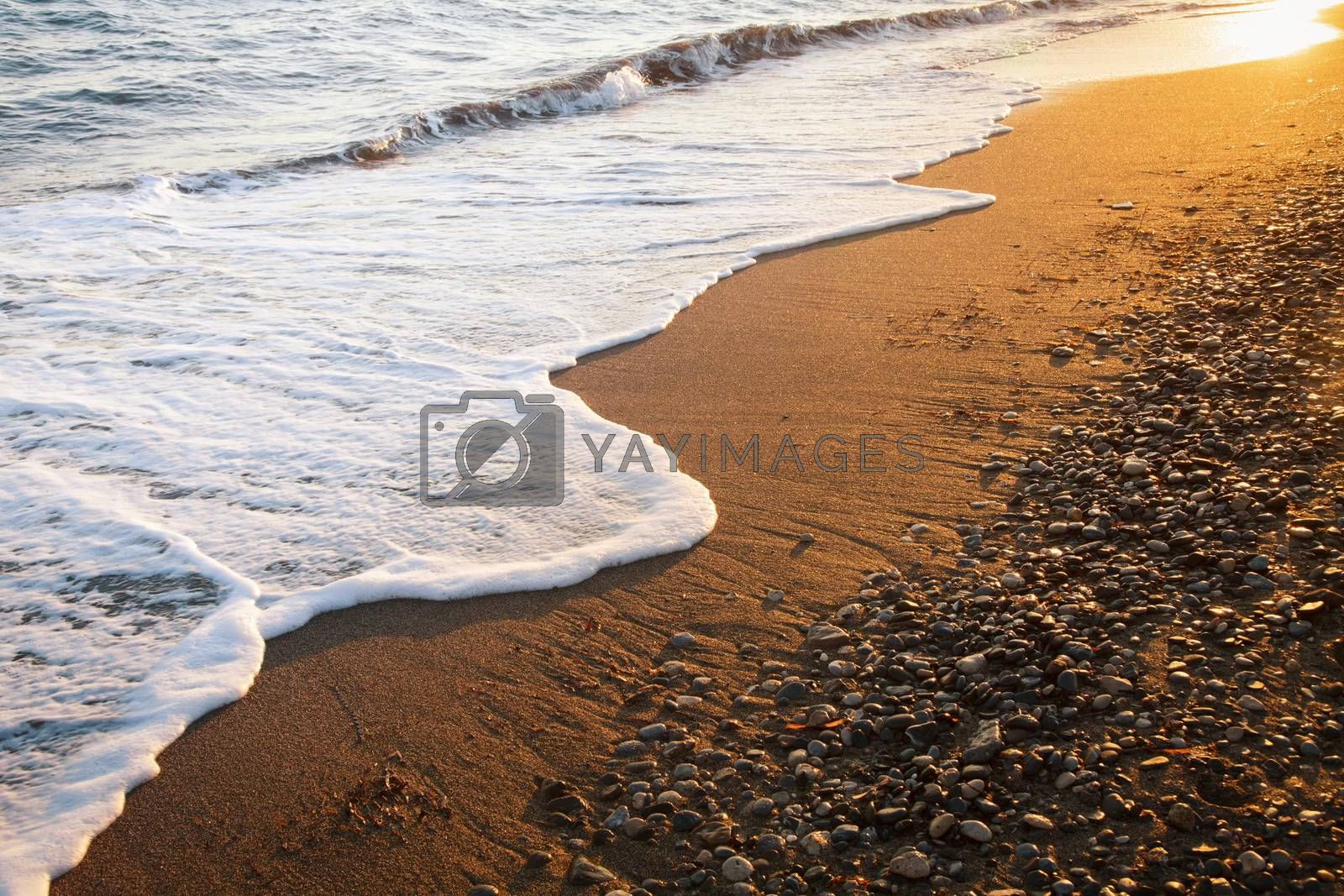 Wave washing up onto a sea shore in the evening light