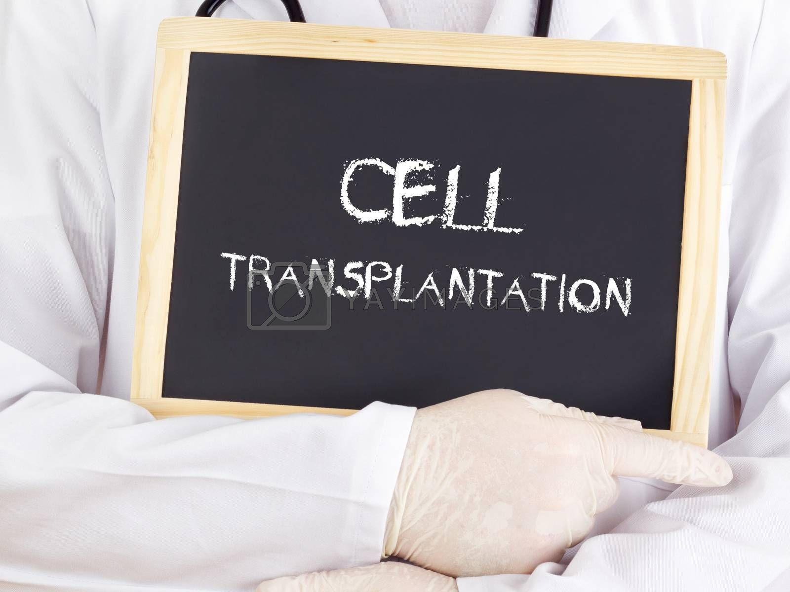 Royalty free image of Doctor shows information: cell transplantation by gwolters