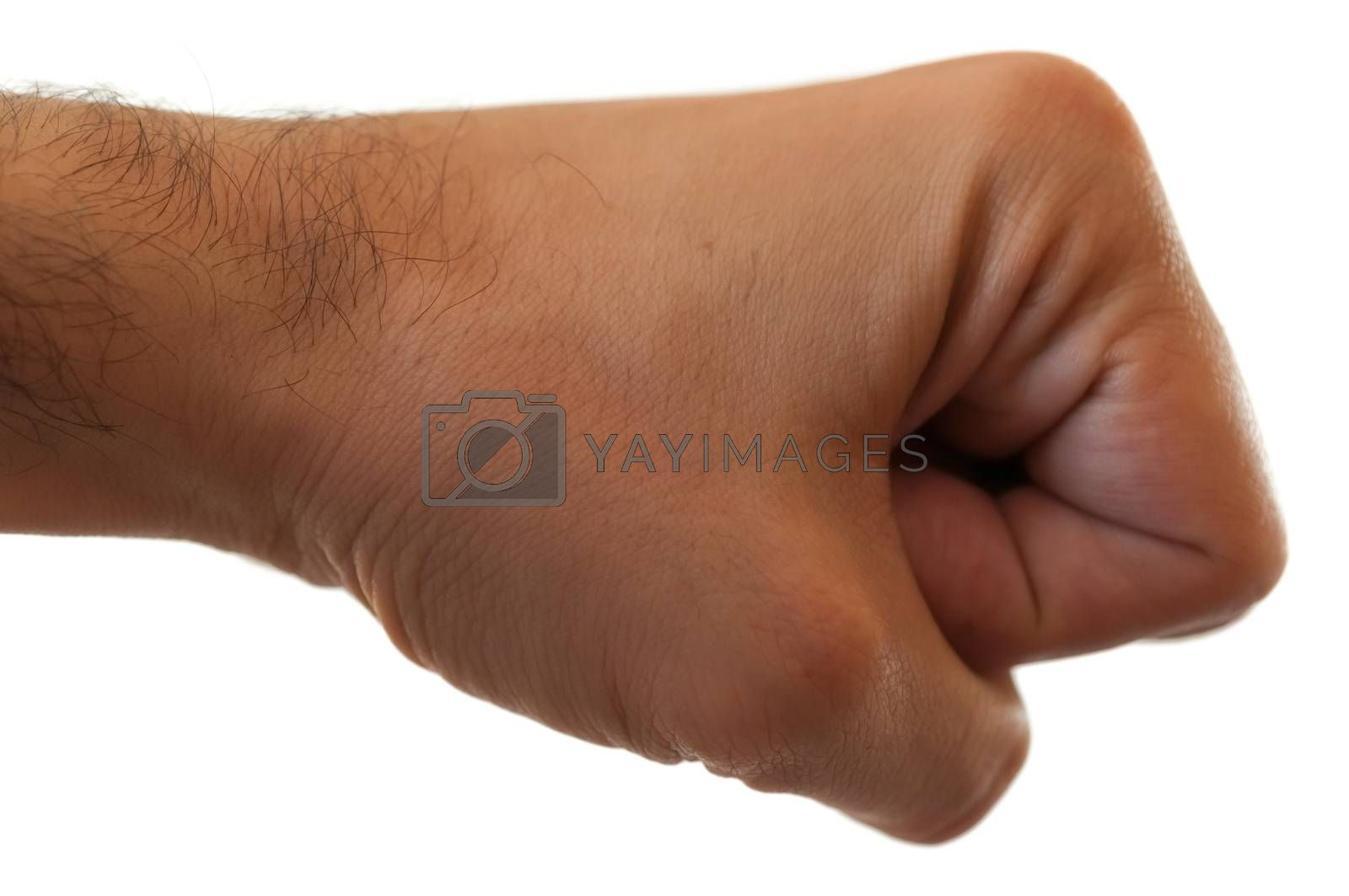 macro of punch in white background in studio