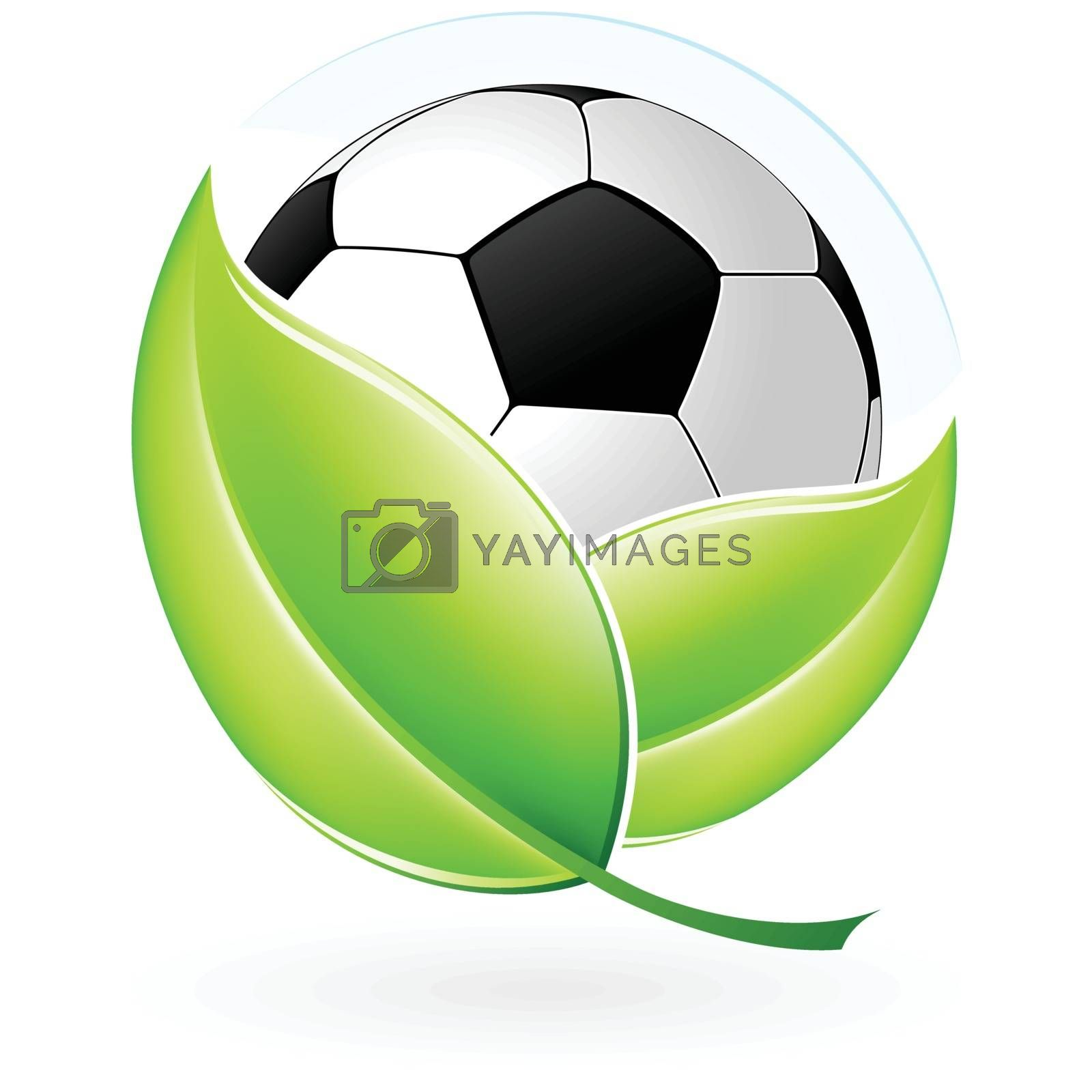 Green icon with leaves and football for your design