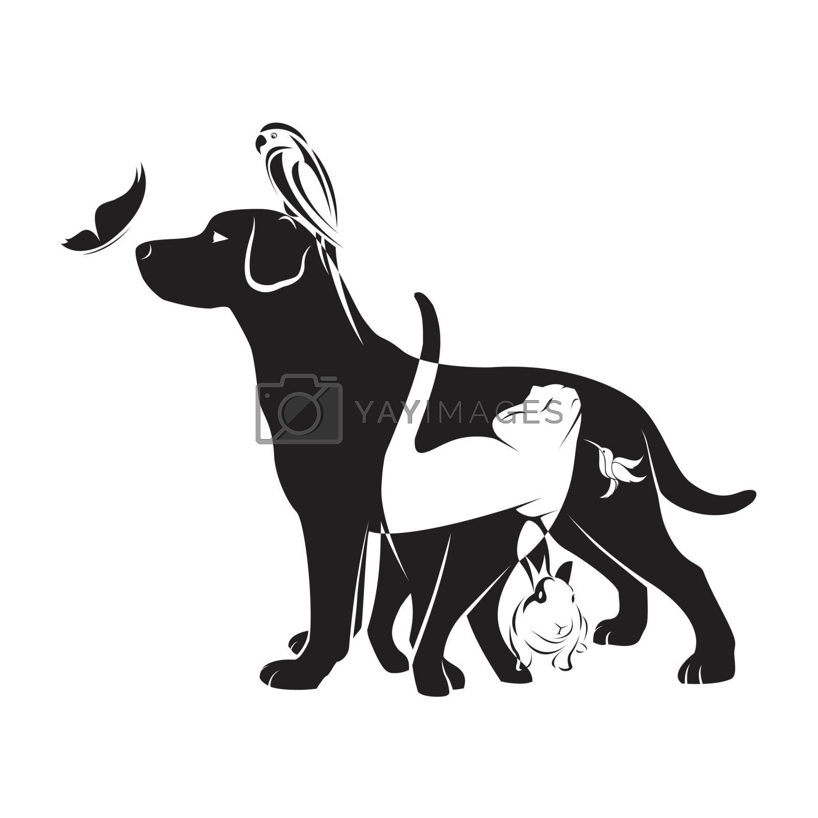 Vector group of pets - Dog, cat, bird,butterfly, rabbit, isolated on white background