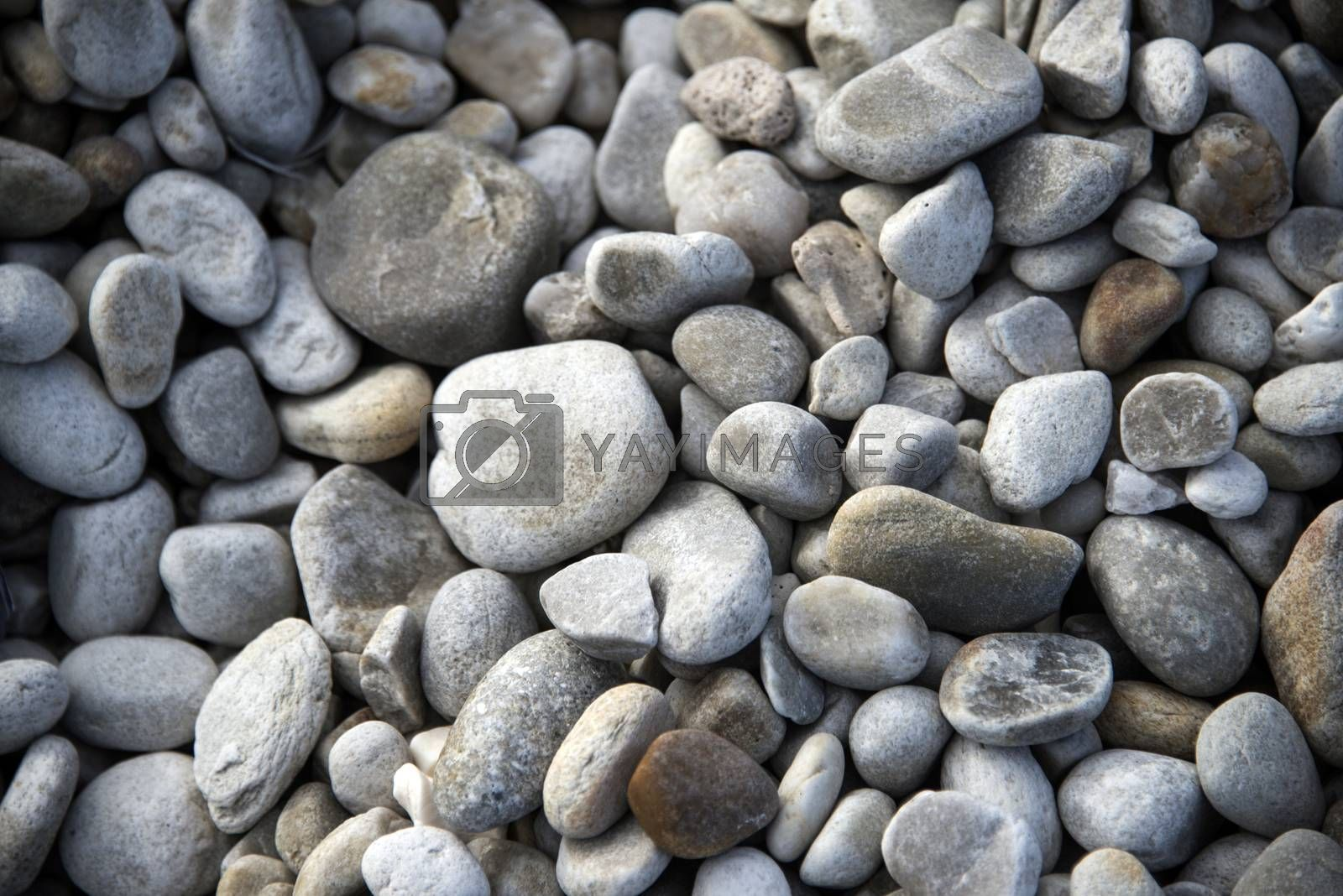 Close up of grey pebbles on a beach