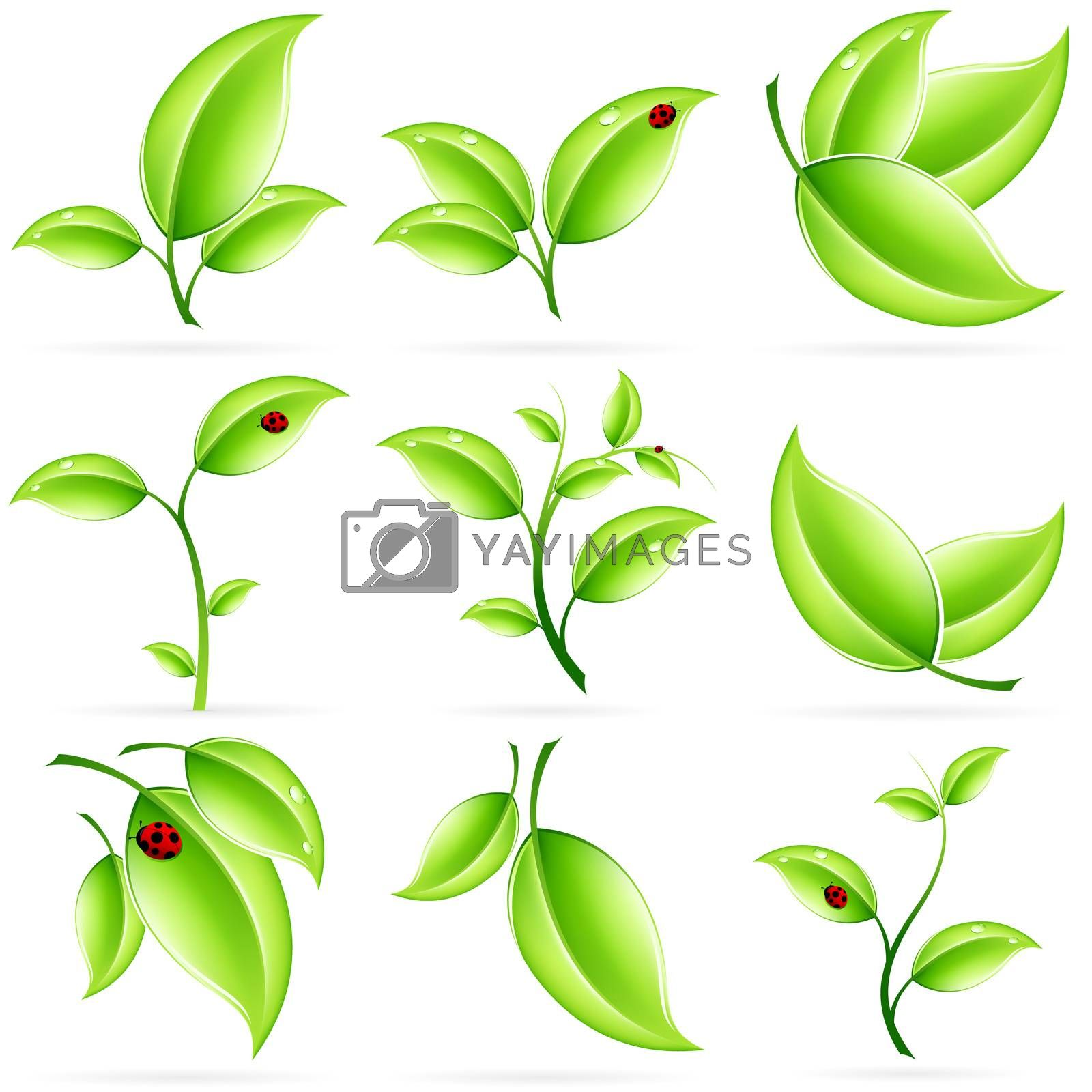 Fresh Green Leaves Icon Set by WaD