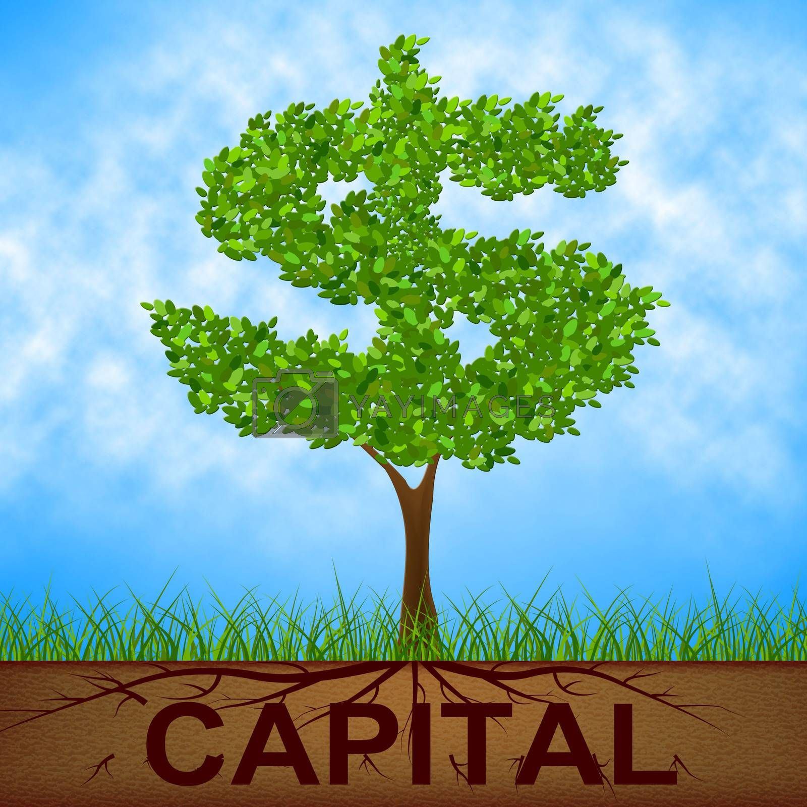 Capital Tree Indicates American Dollars And Banking by stuartmiles