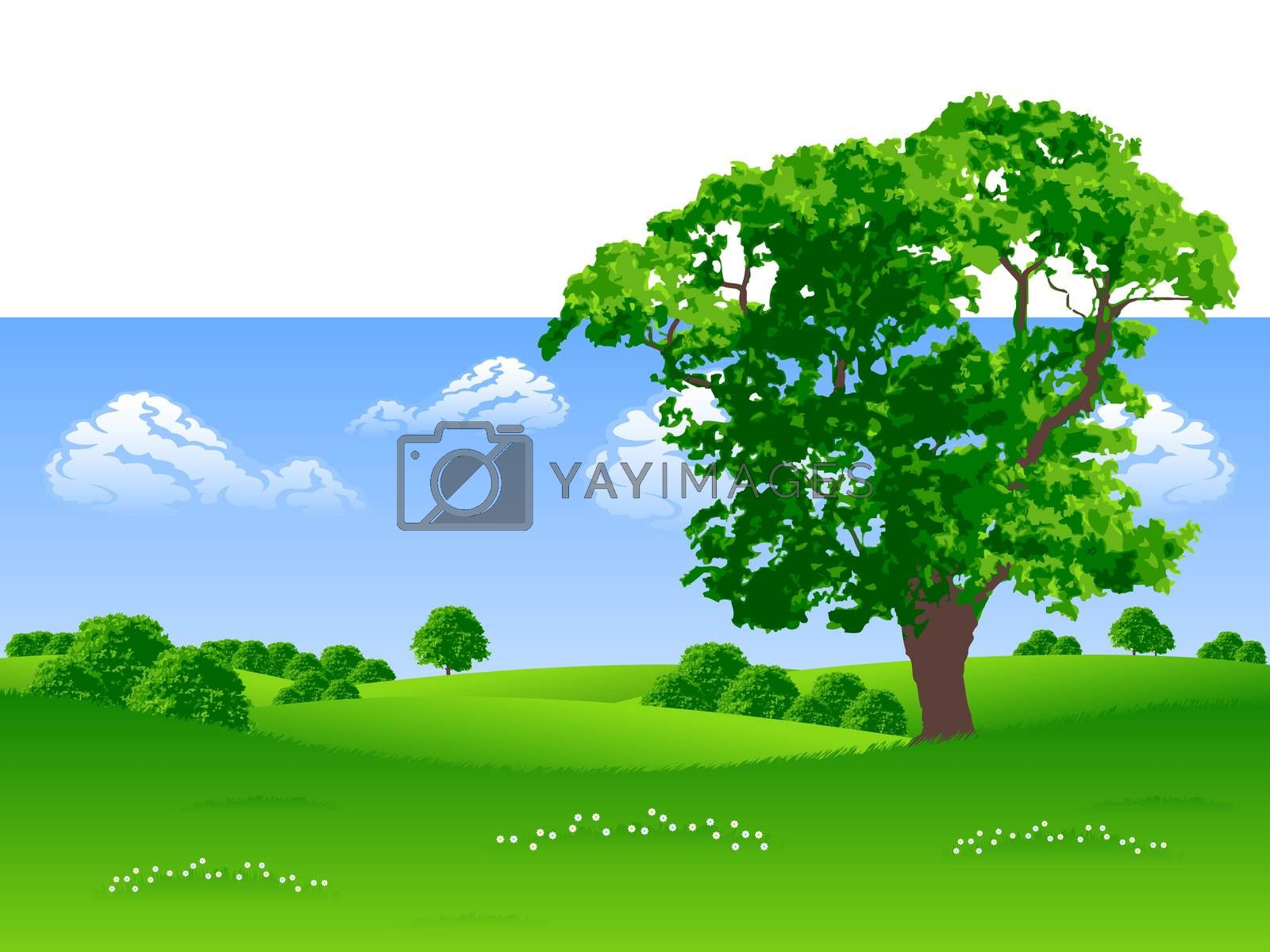 Summer landscape by WaD