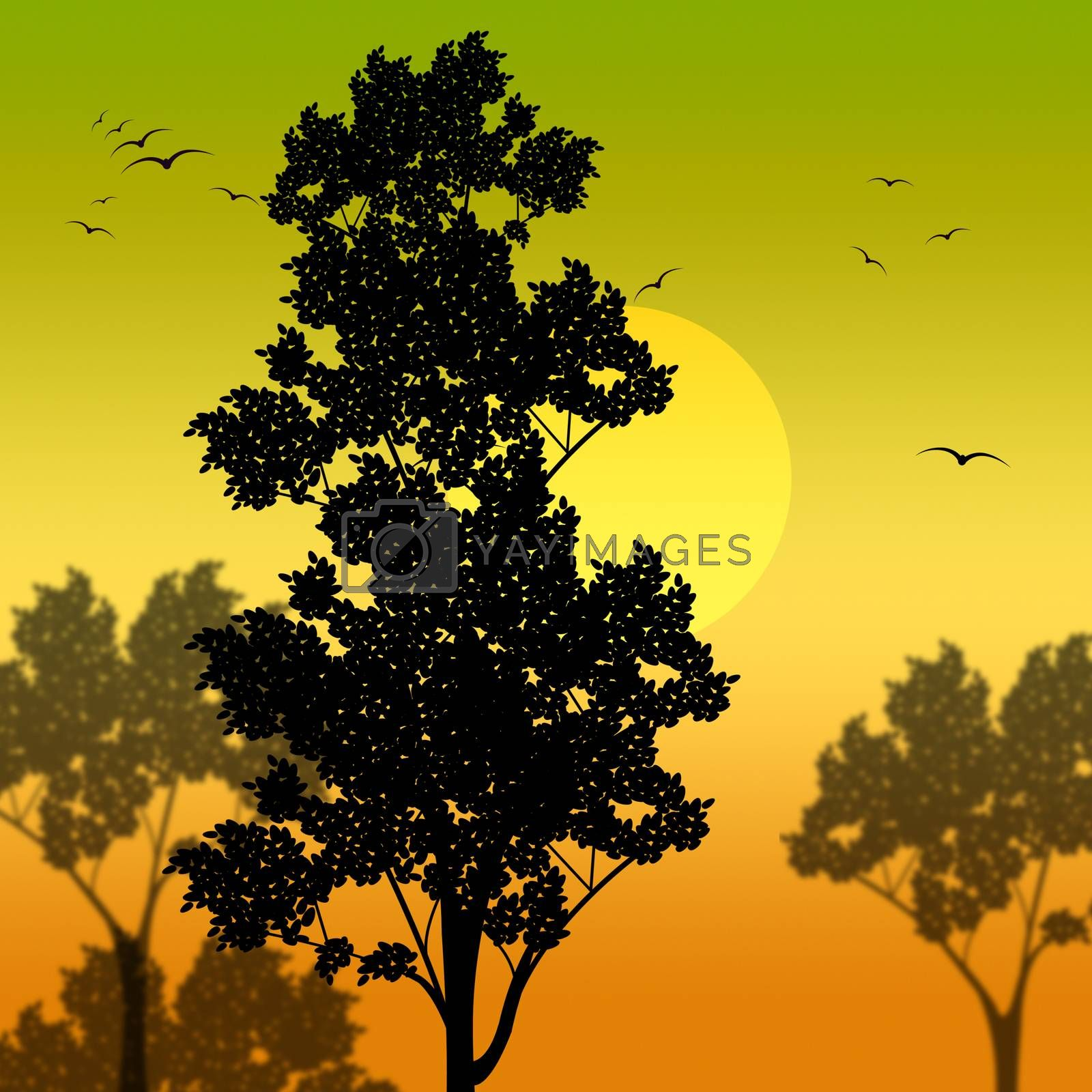 Countryside Sunset Represents Scene Meadows And Reforestation by stuartmiles