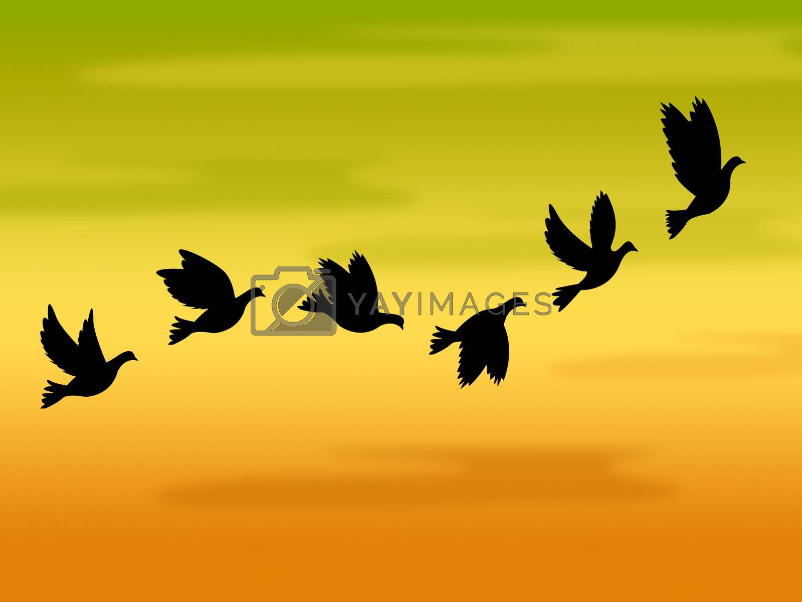 Flying Birds Represents Summer Time And Heat by stuartmiles