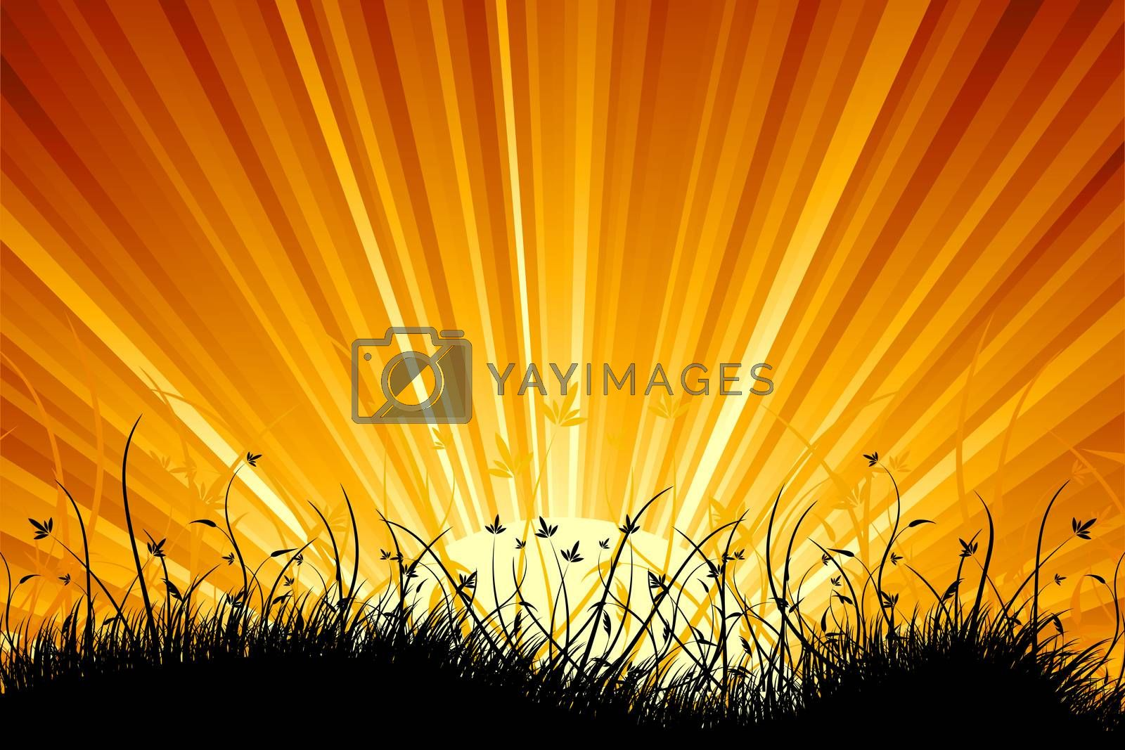 Amazing natural sunrise landscape with grass silhouette by WaD