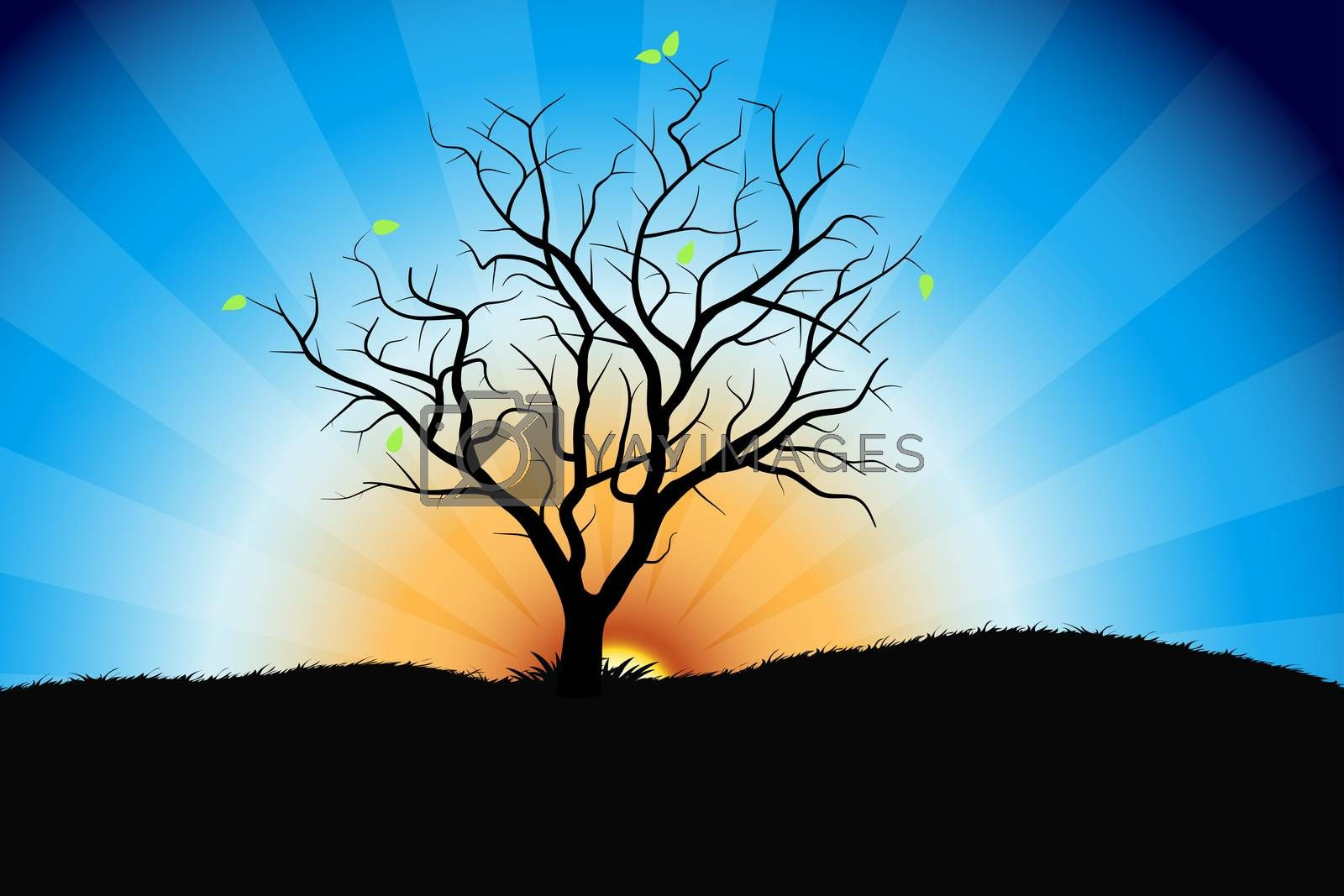 Tree sunrise by WaD