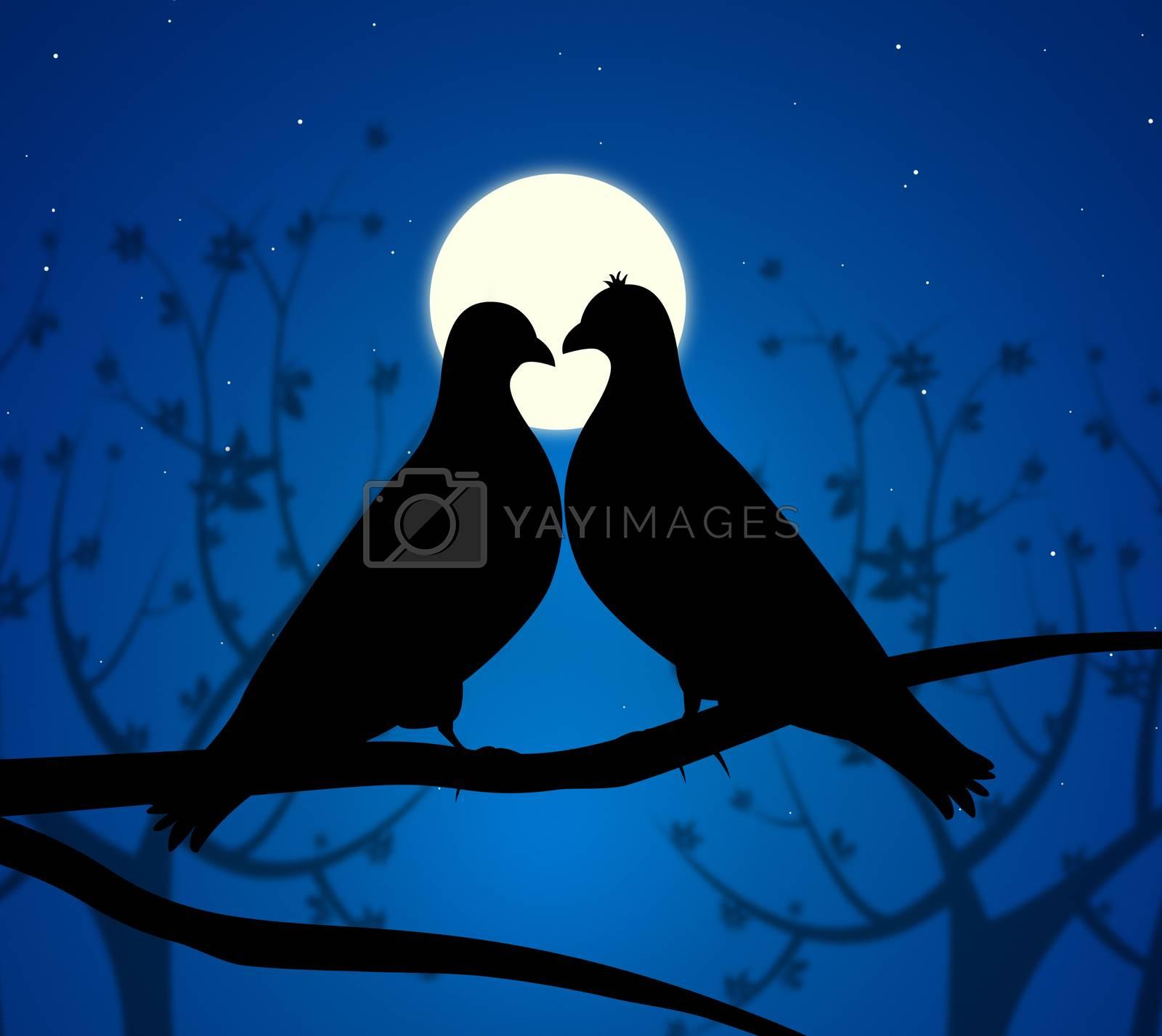 Love Birds Means Boyfriend Affection And Fondness by stuartmiles