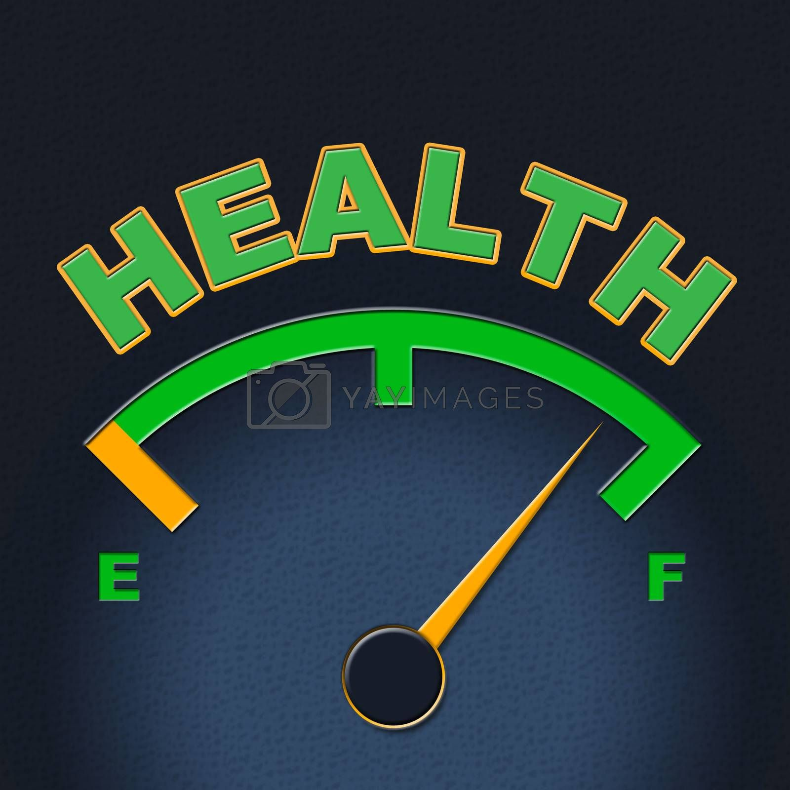 Health Gauge Indicates Preventive Medicine And Care by stuartmiles