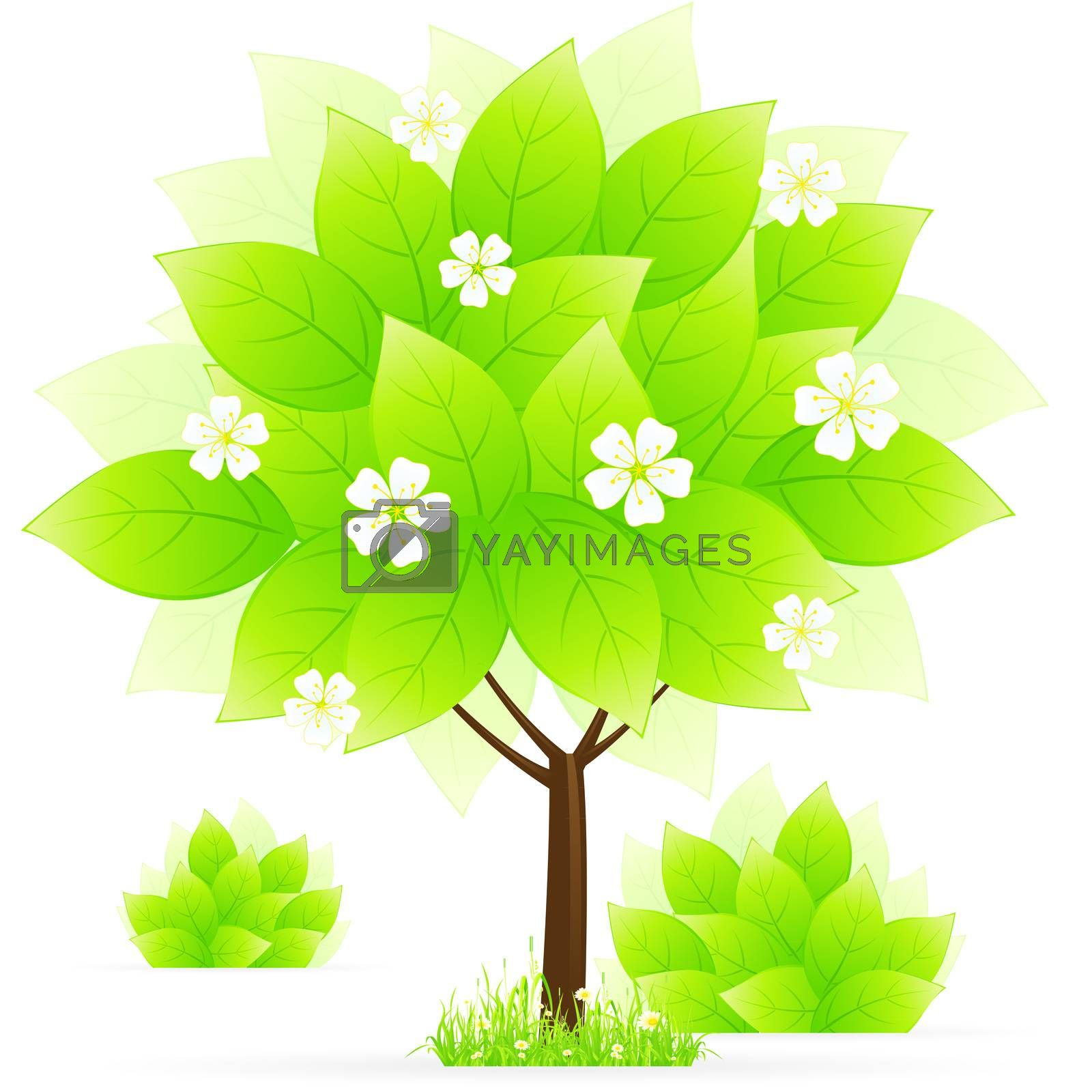 Green tree with grass by WaD