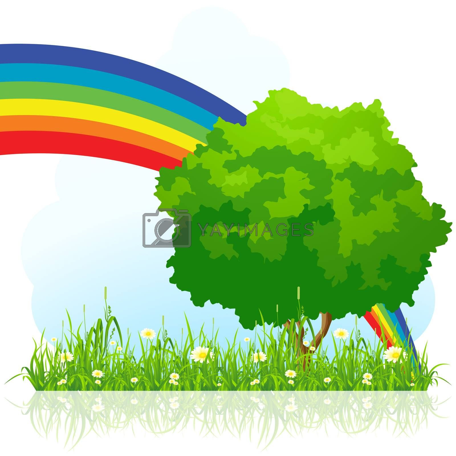 Isolated green tree with rainbow by WaD