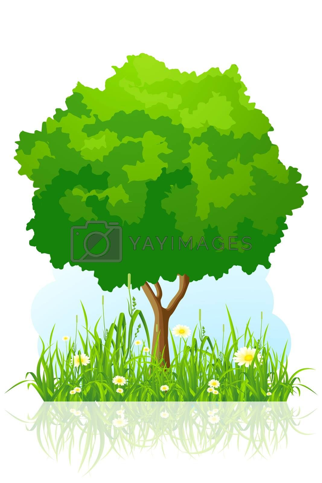 Isolated green tree background by WaD