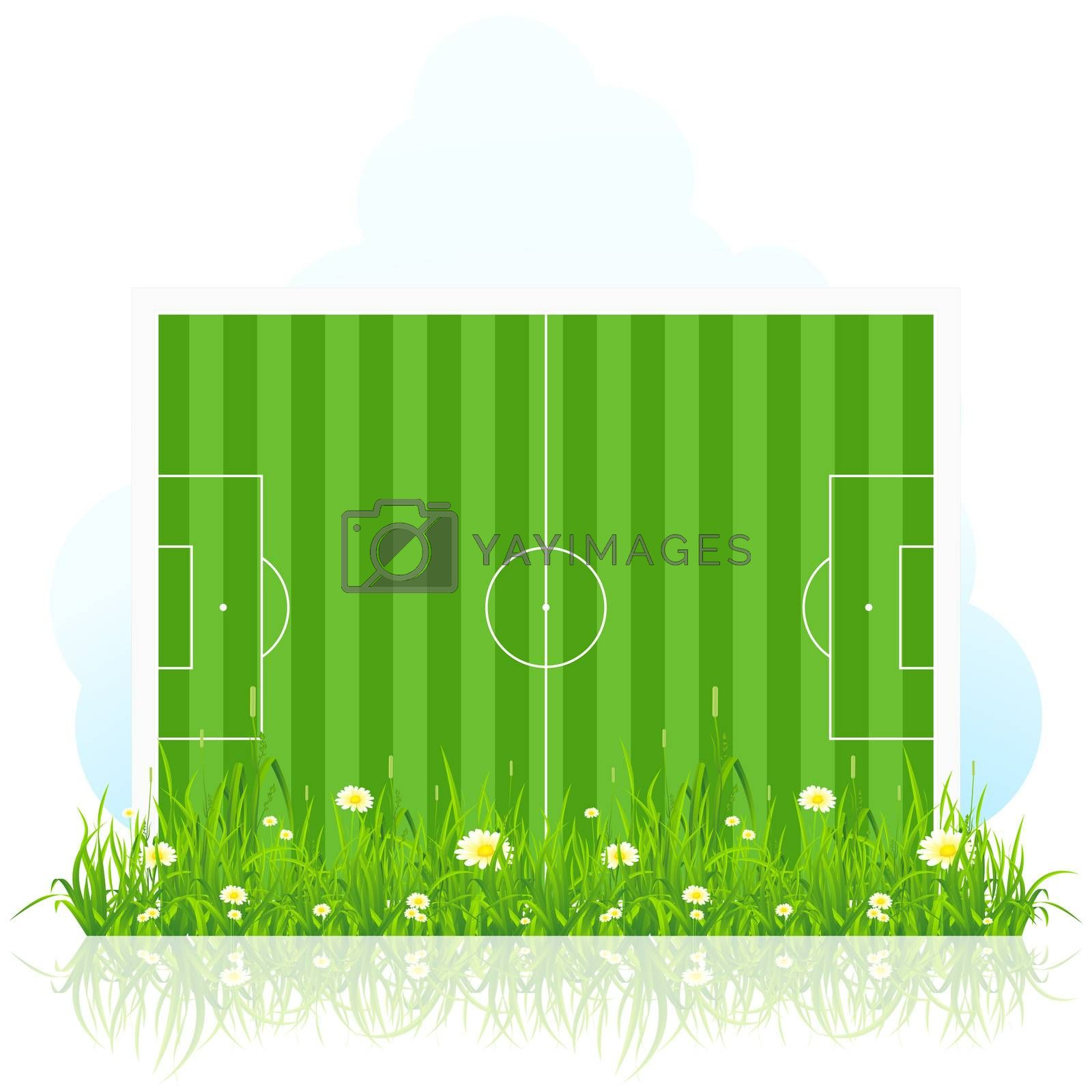 Football field with grass by WaD