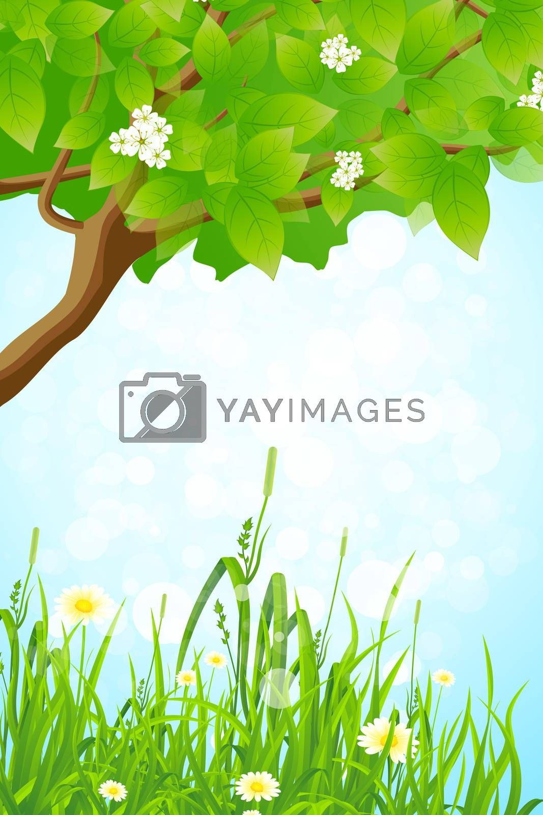 Green Grass and Tree Branch by WaD