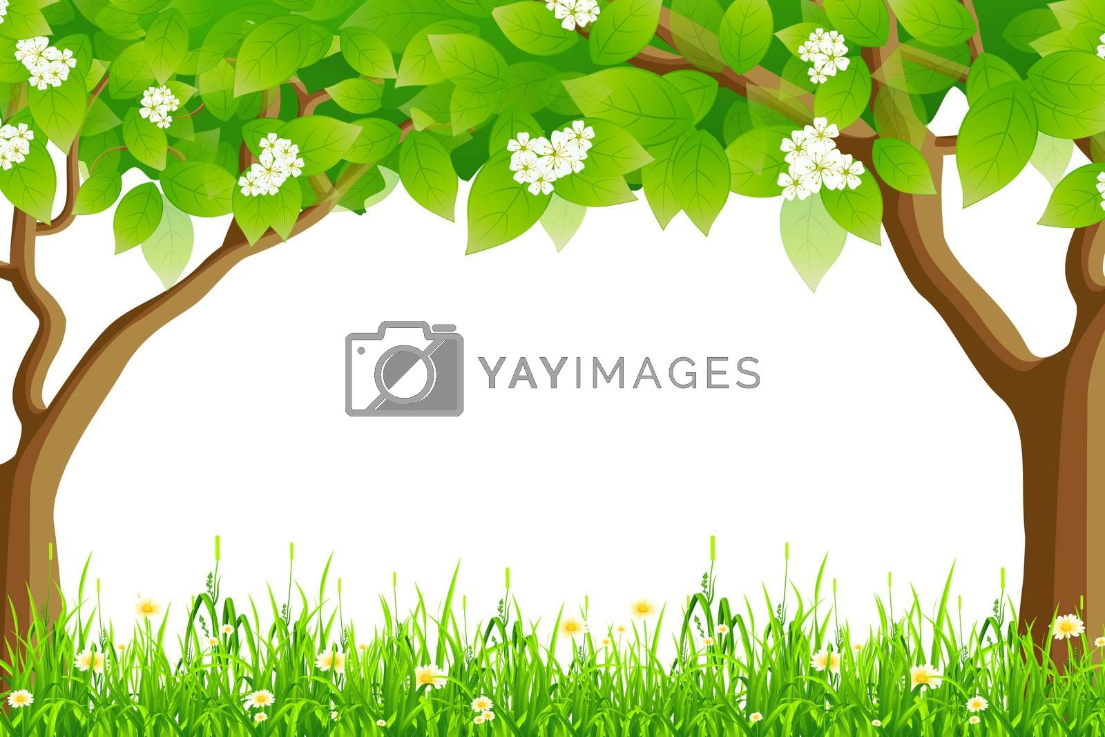 Summer Frame by WaD