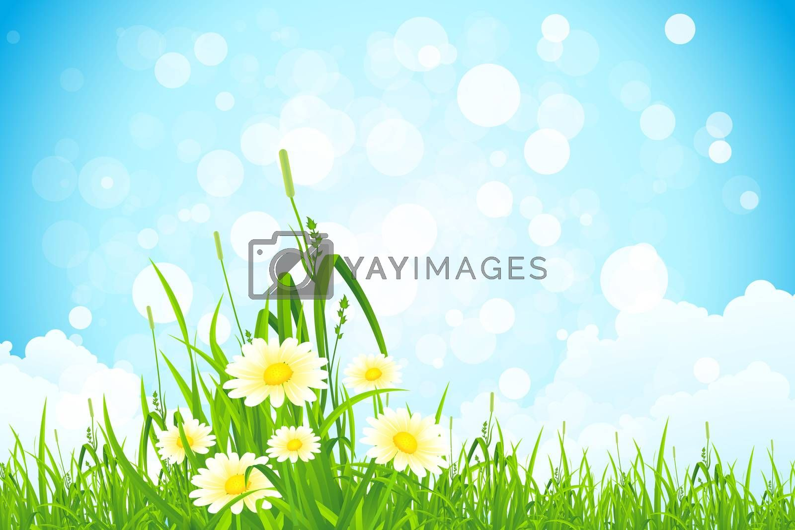Flowers in the Grass by WaD
