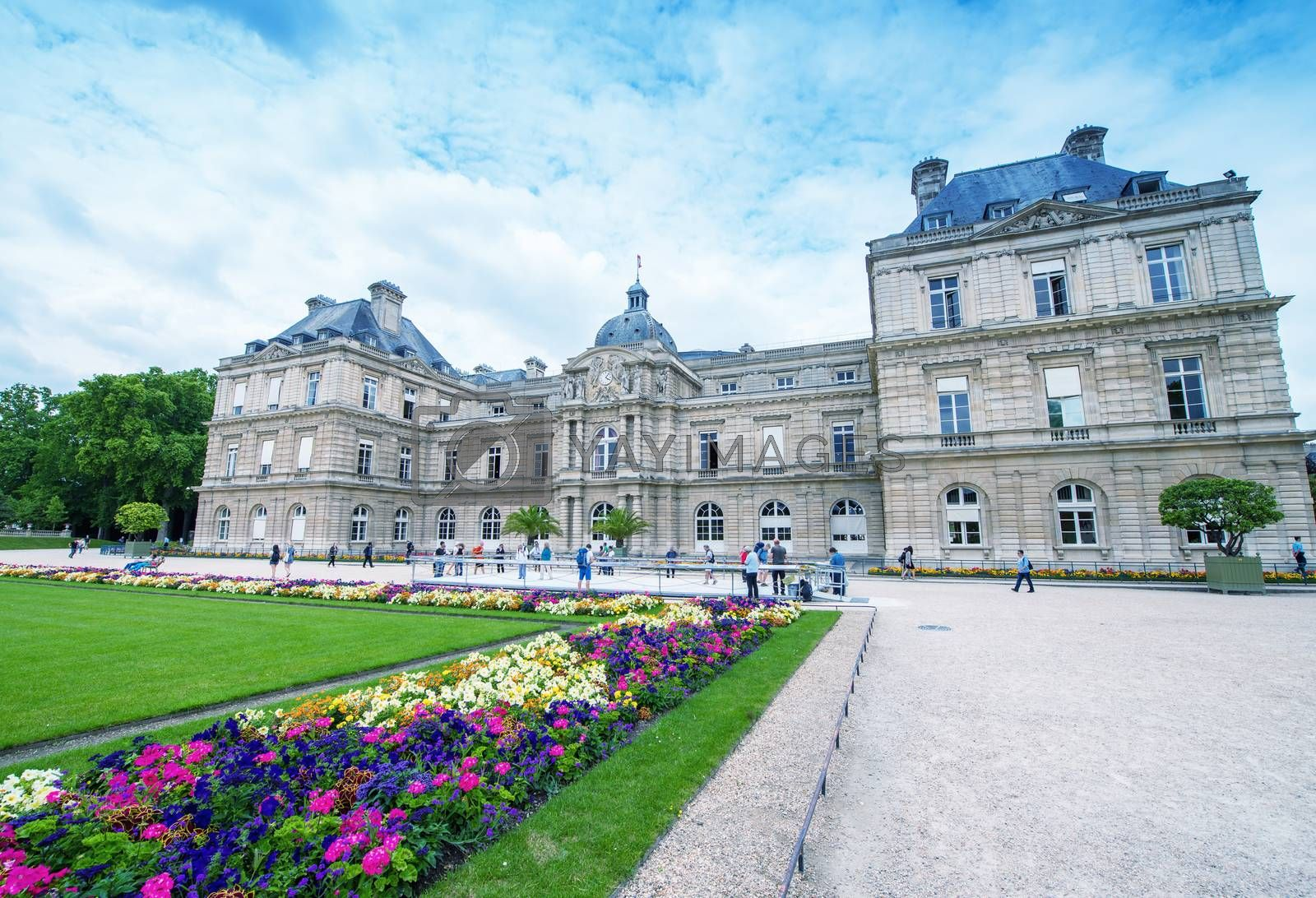 Luxembourg Gardens on a beautiful summer day - Paris.