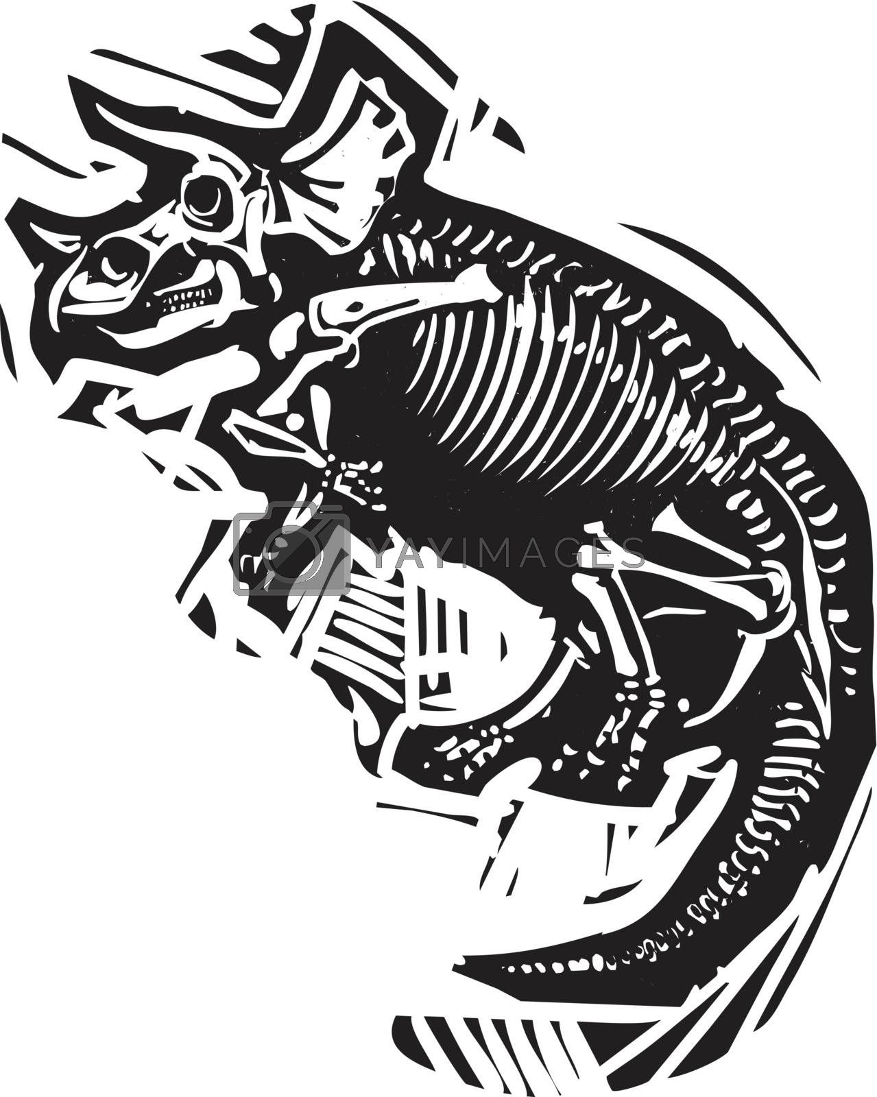 Woodcut style image of a fossil of a Triceratops dinosaur skeleton