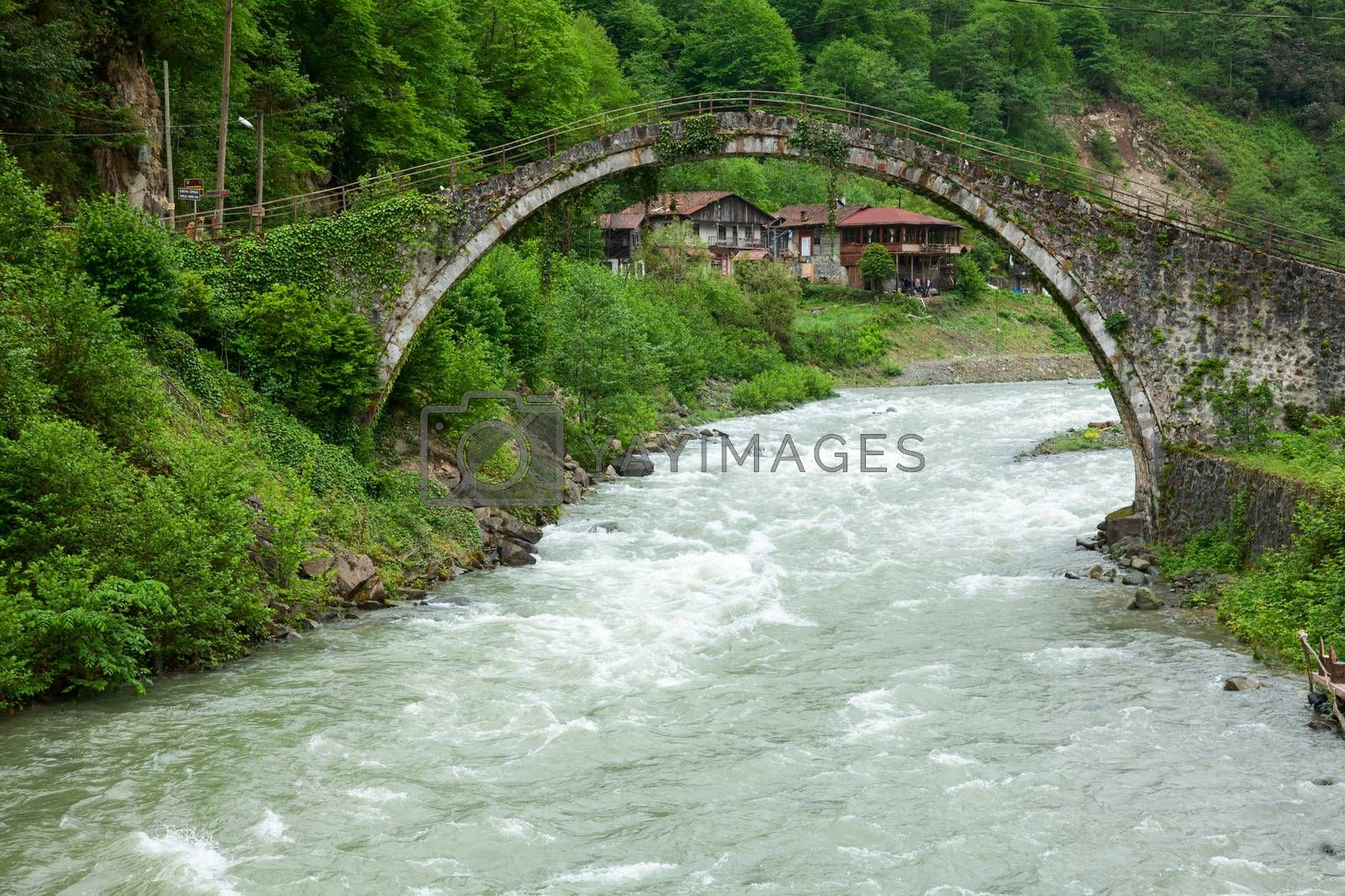 Senyuva Bridge is one of more than twenty well-preserved Ottoman-era arched bridges over the Firtina river near town of Caml��hemsin in Rize Province at the eastern end of Turkey's Black Sea coast. Dated 1696 Senyuva Bridge is the largest and the oldest bridge in region.