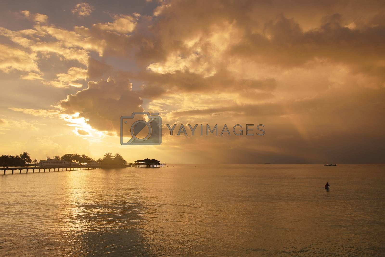 tropical beach nature landscape scene with white sand at summer