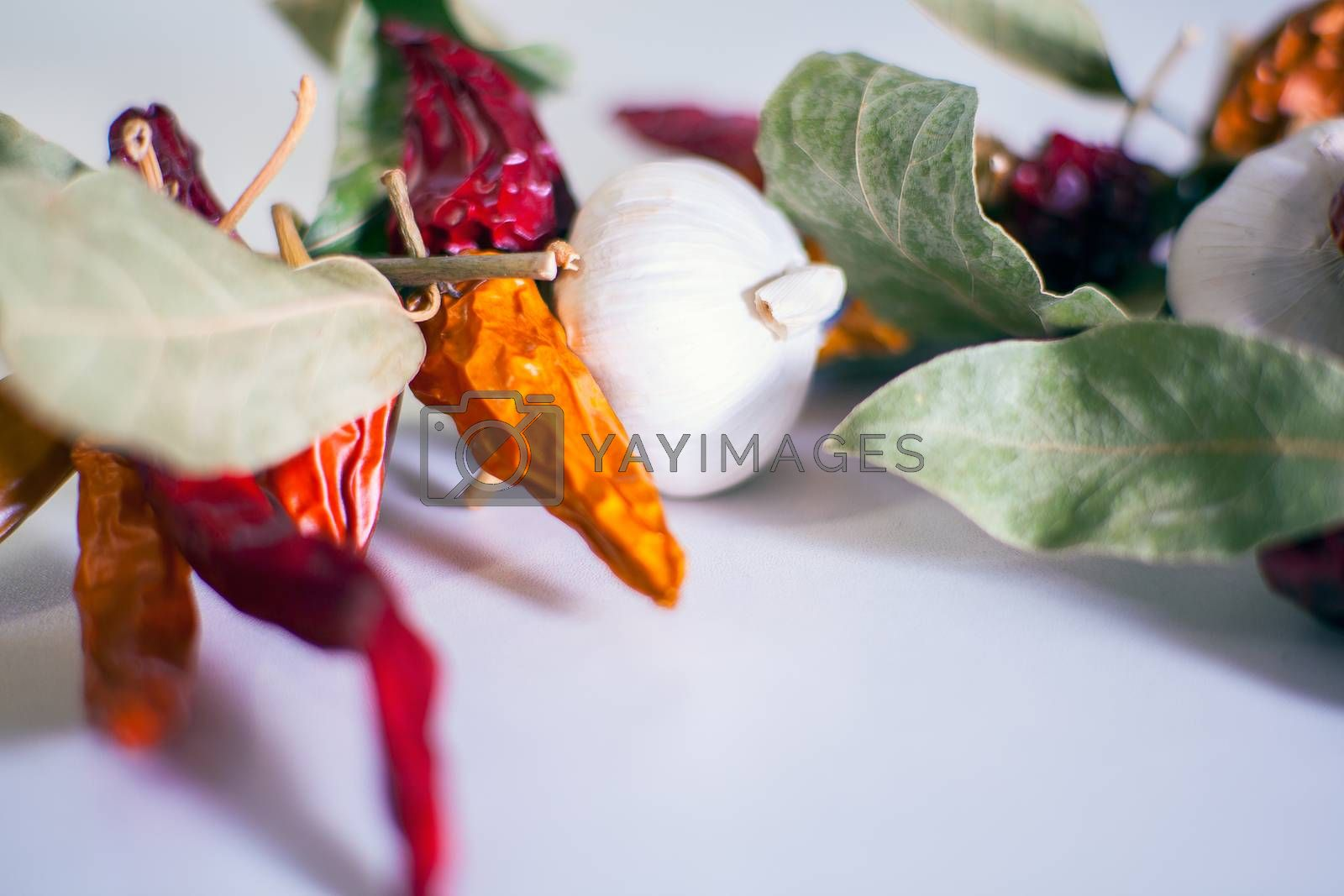 Close up of Garlics, chili peppers, bay leaves