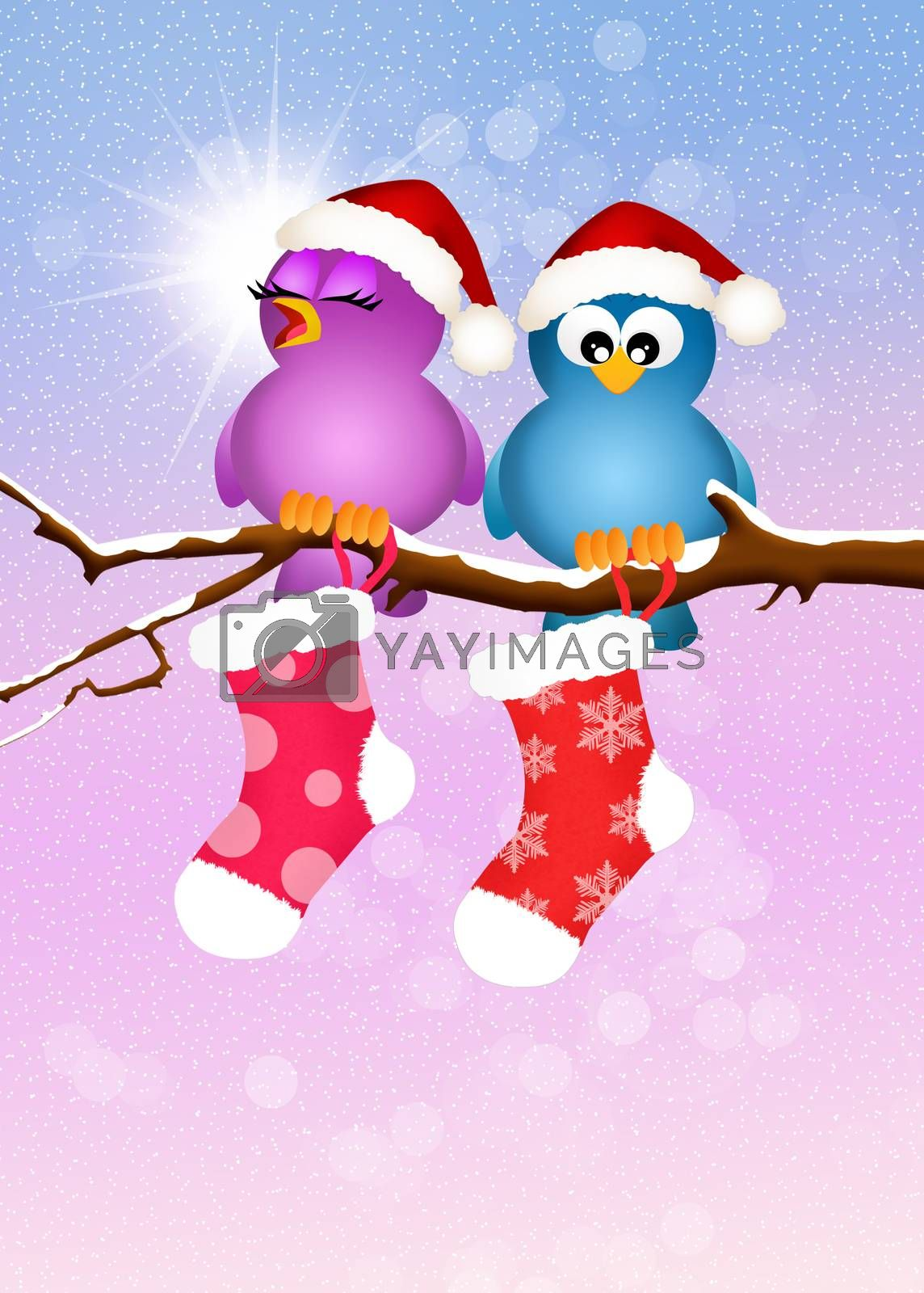 illustration of birds with Christmas socks