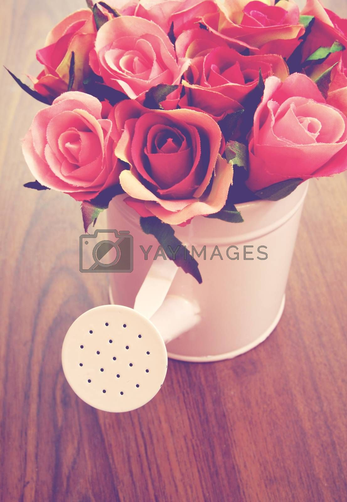 Roses in watering can for decoration with retro filter effect