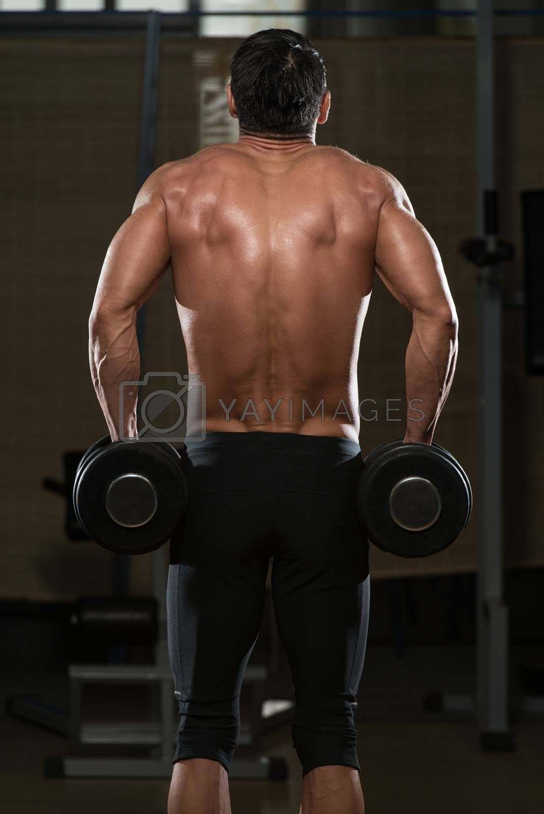 Fit Athlete Working Out Trapezius - Dumbbell Concentration Curls