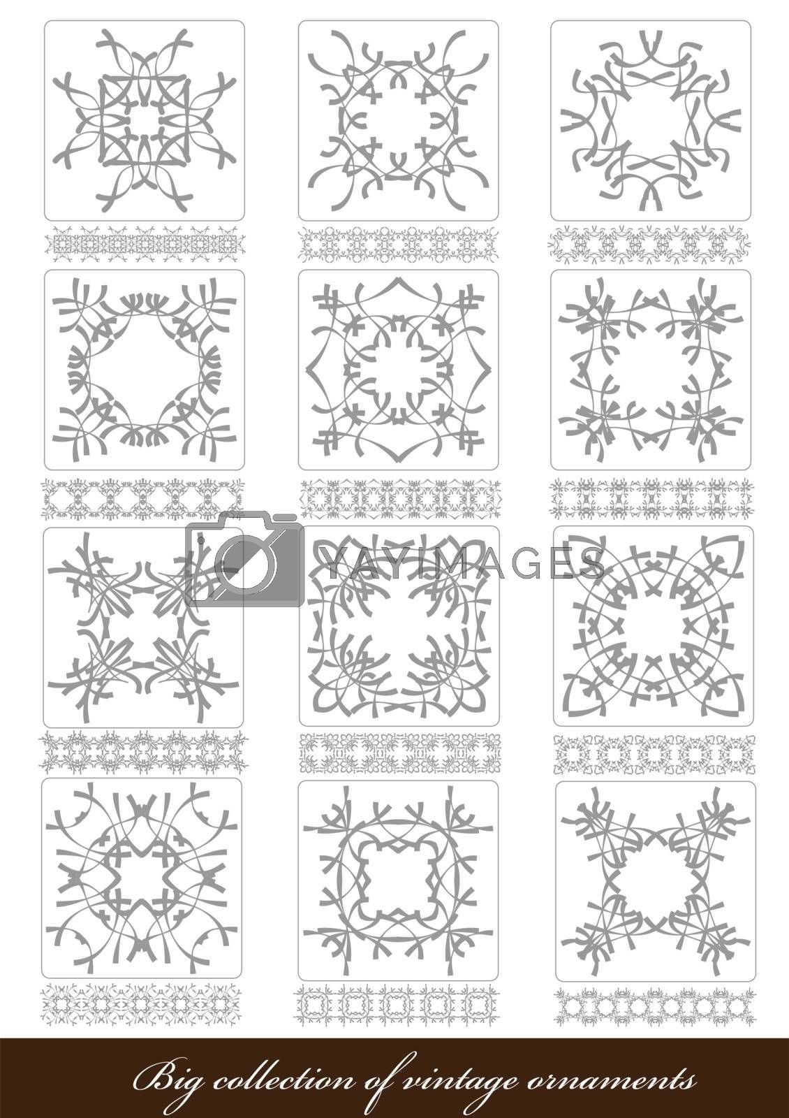 Royalty free image of Big Collection of Ornaments in Different Design styles. Vector i by leonido