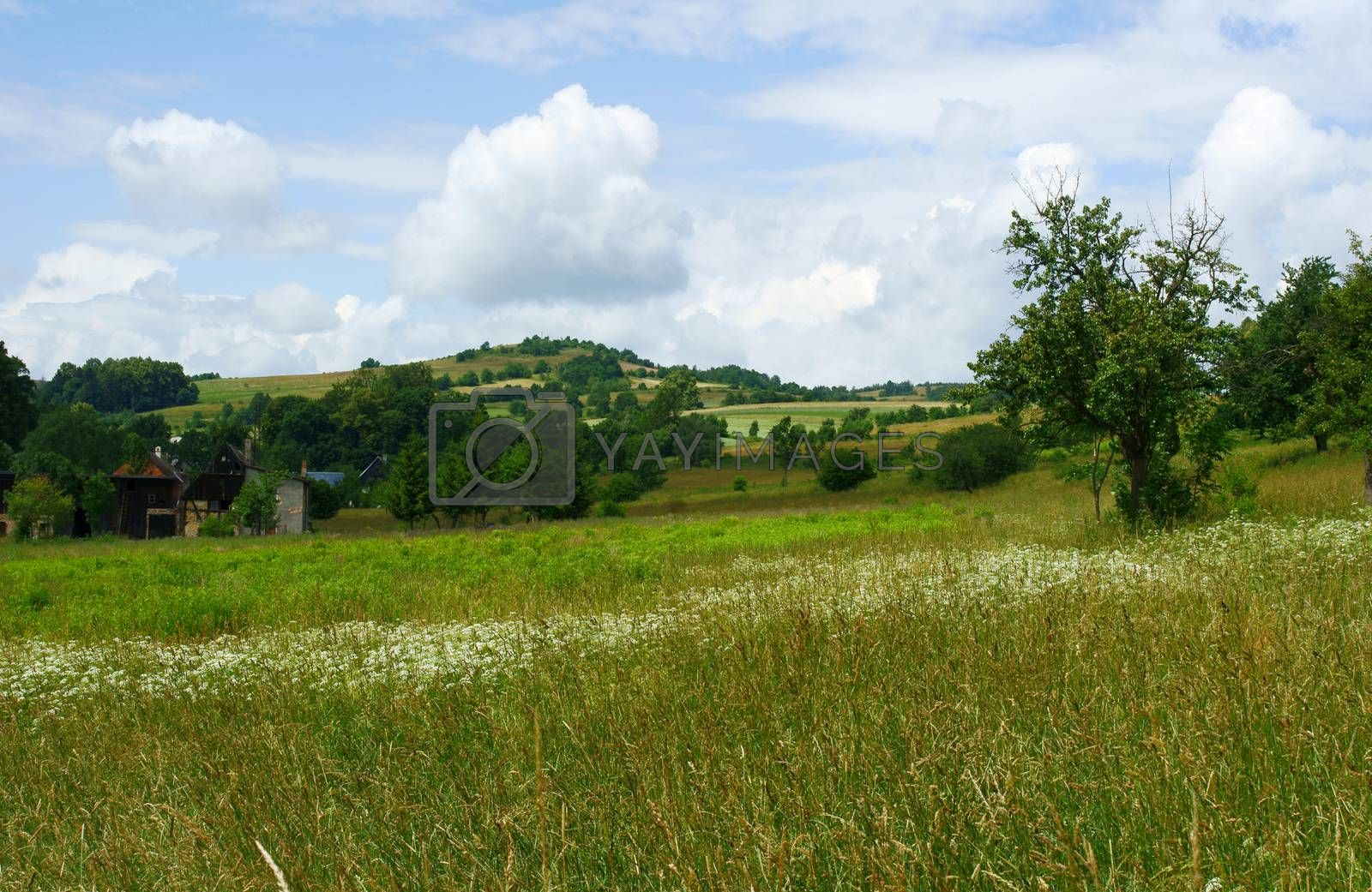 Royalty free image of Spring view of the hills by gkordus