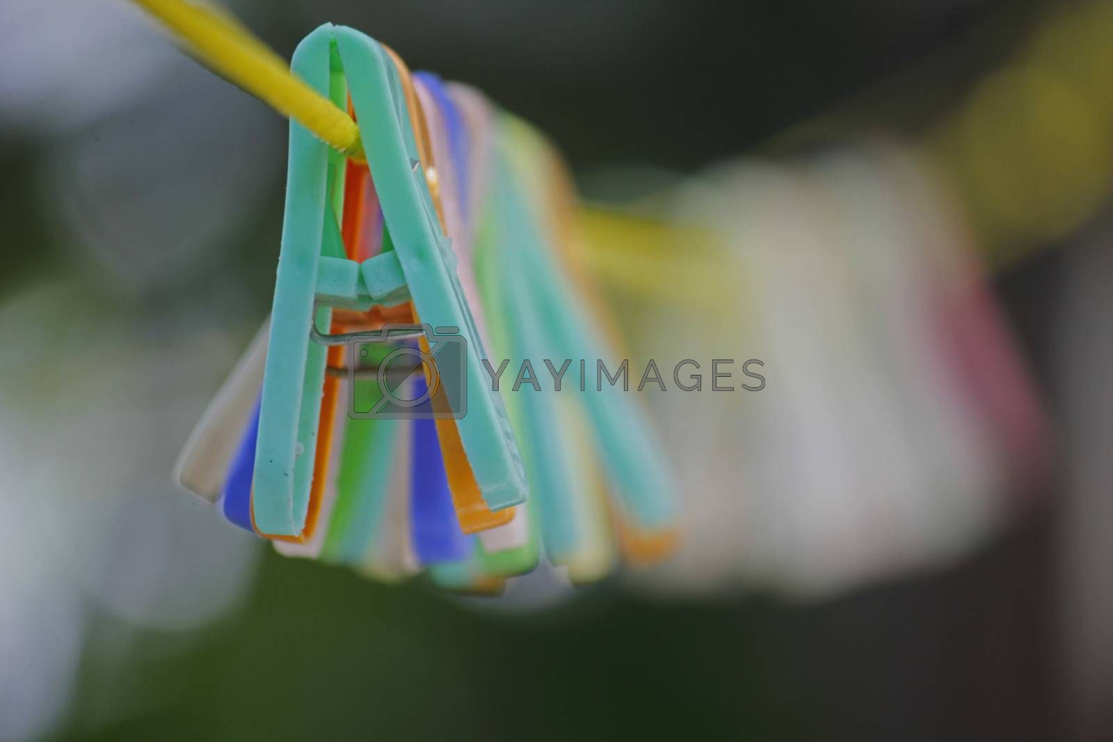 Royalty free image of Colorful clothes pegs hanging in wire by yands