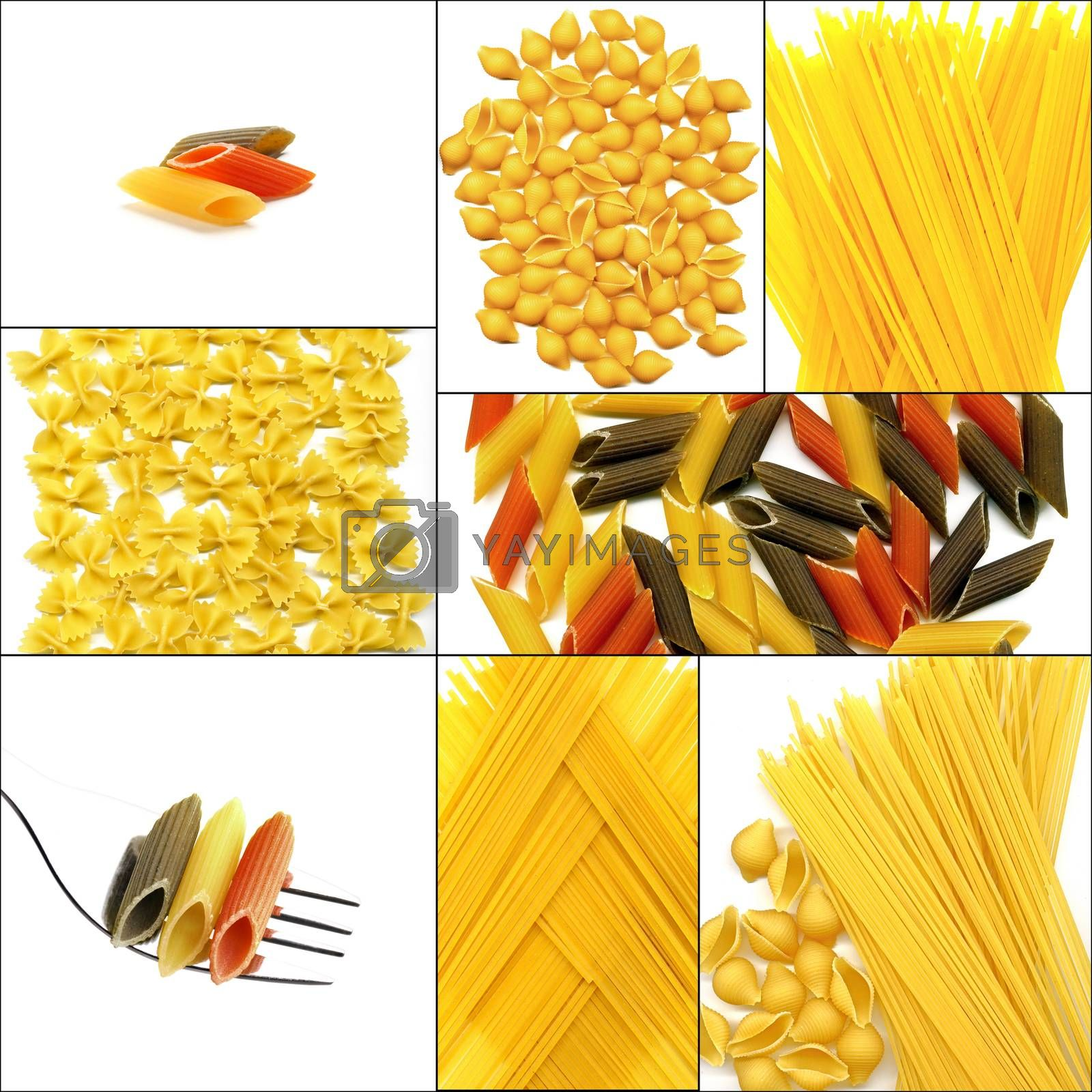Royalty free image of various type of Italian pasta collage by keko64