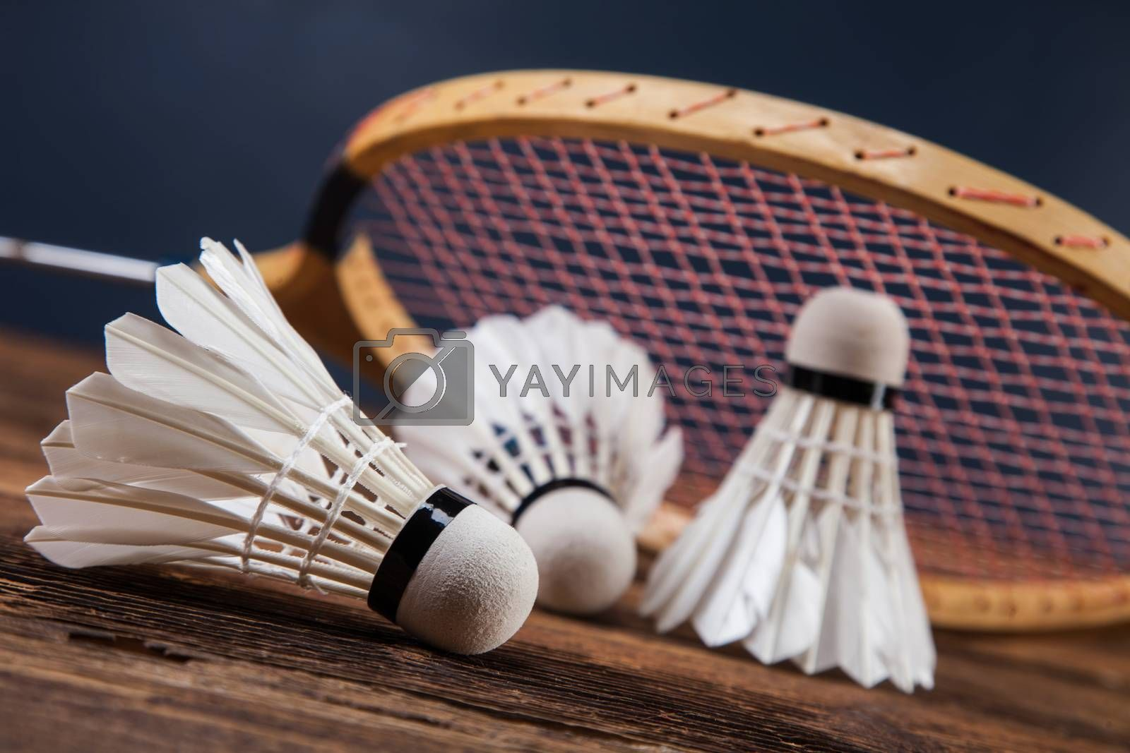 A set of badminton. Paddle and the shuttlecock. by fikmik
