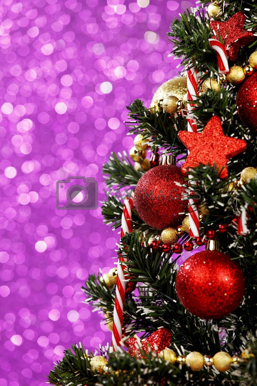 Royalty free image of Christmas tree by Yellowj