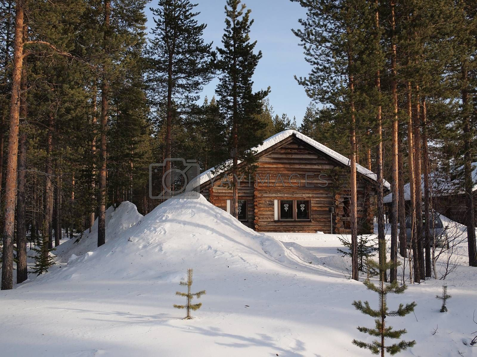 Royalty free image of Romantic wintersport chalet by pljvv