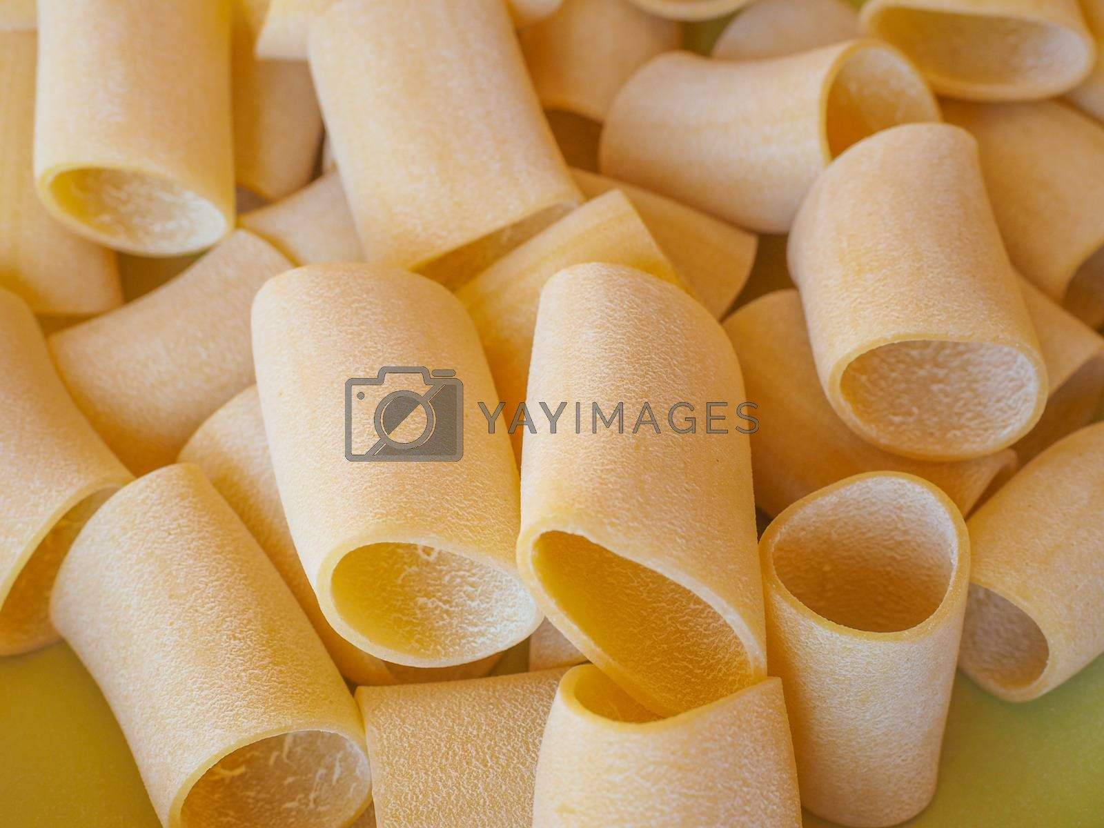 Royalty free image of Paccheri pasta by claudiodivizia
