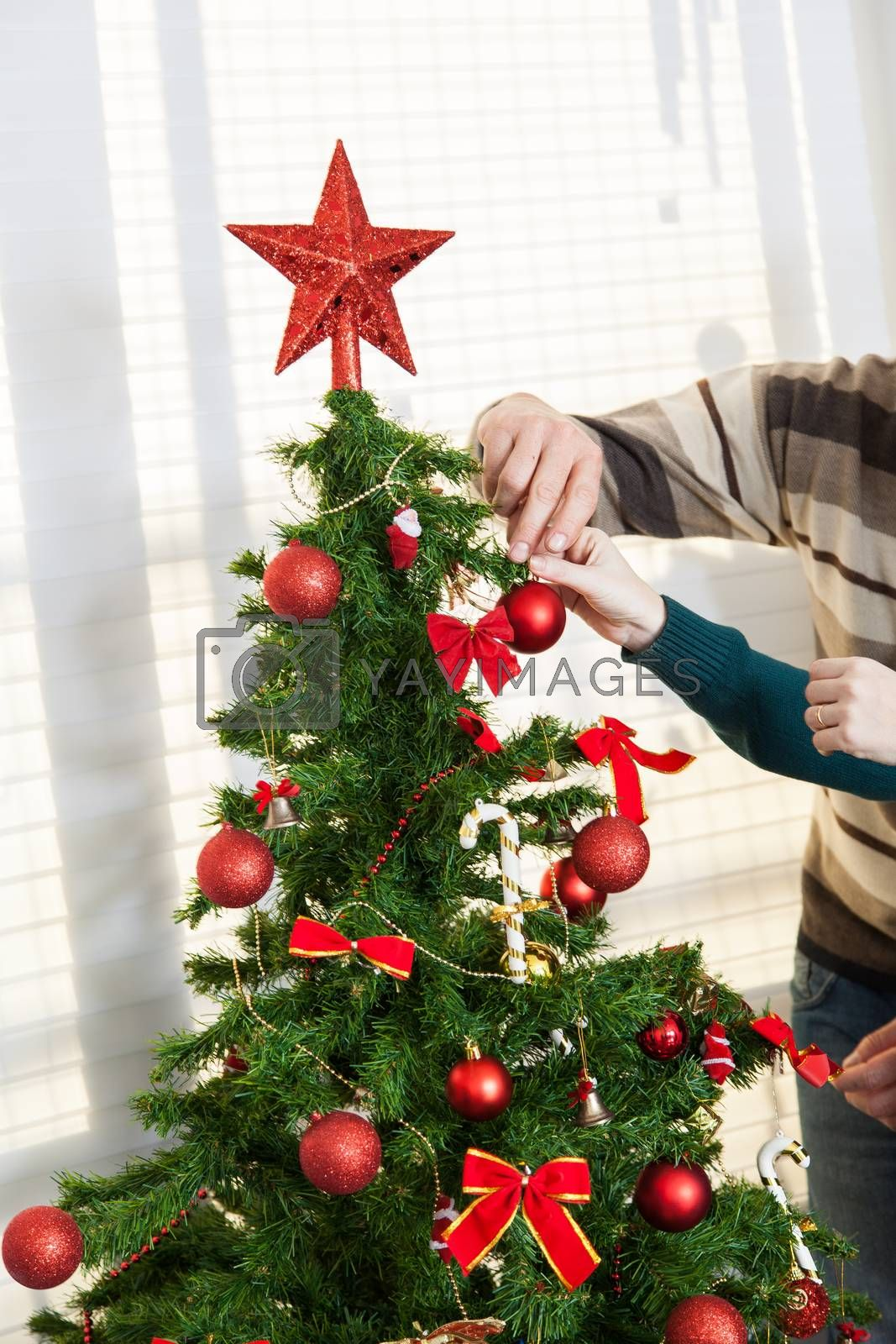 Decorating the christmas tree by ifilms
