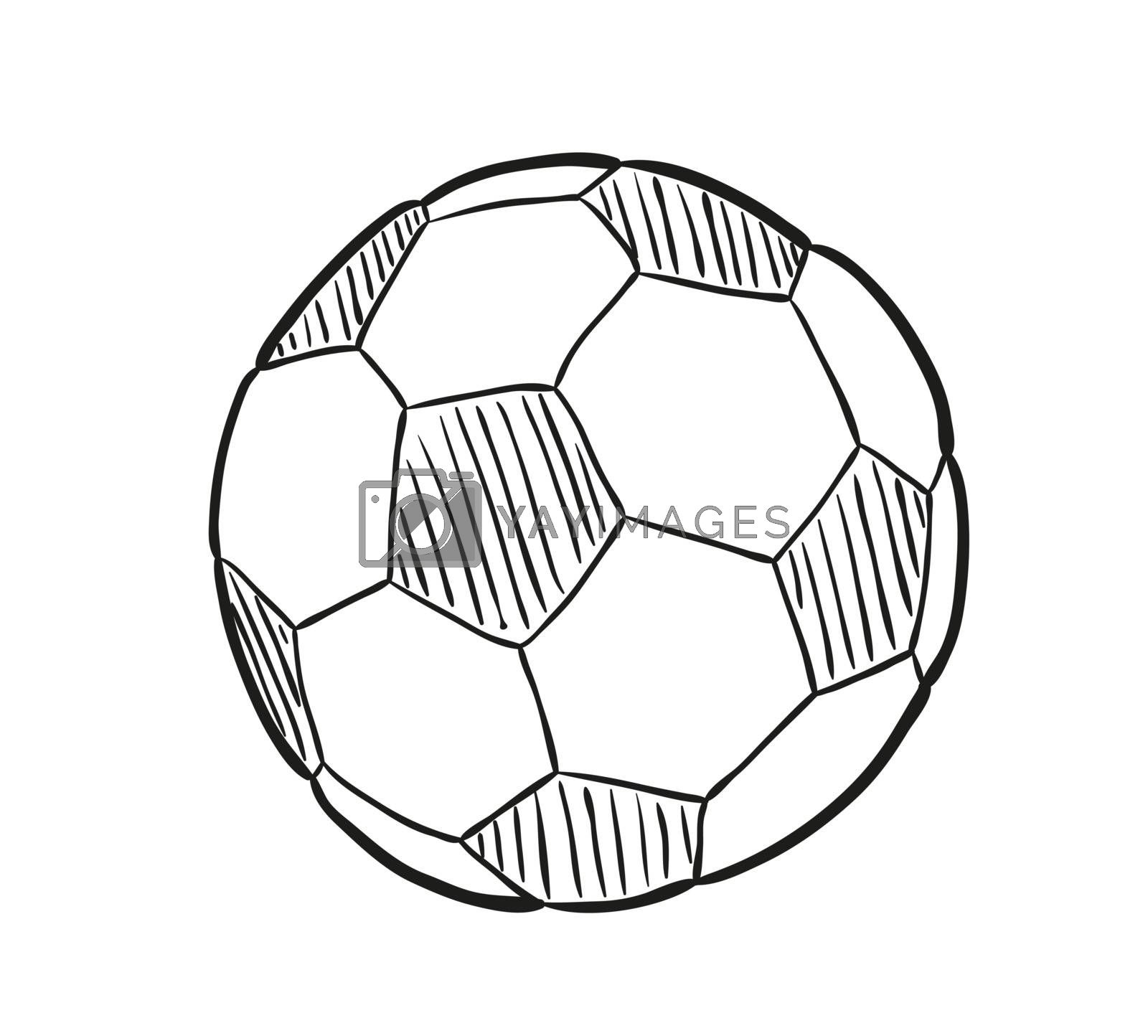 sketch of the football ball on white background, isolated