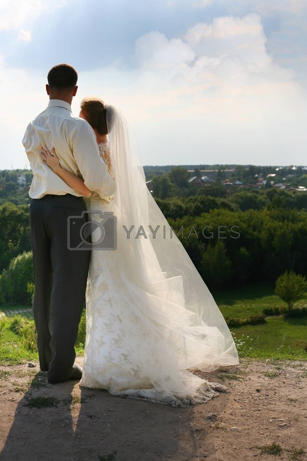 Beautiful the bride and groom on landscape background