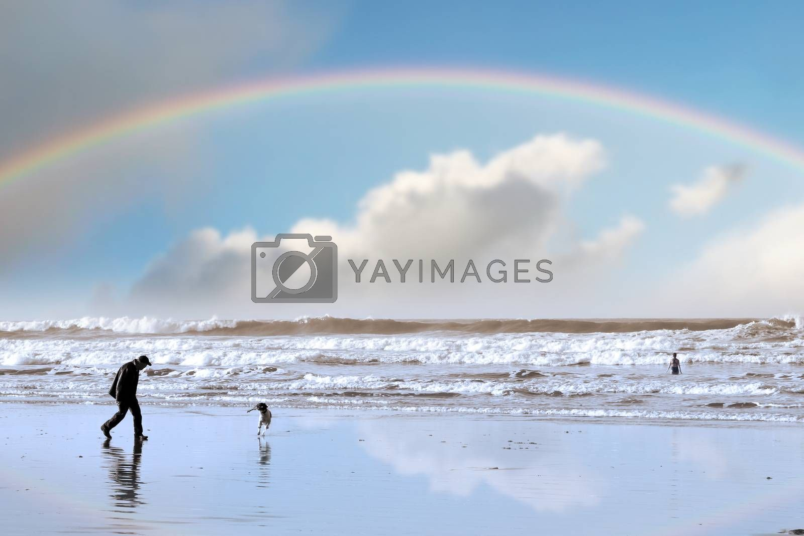 one man and his dog on Ballybunion beach county Kerry Ireland with a rainbow