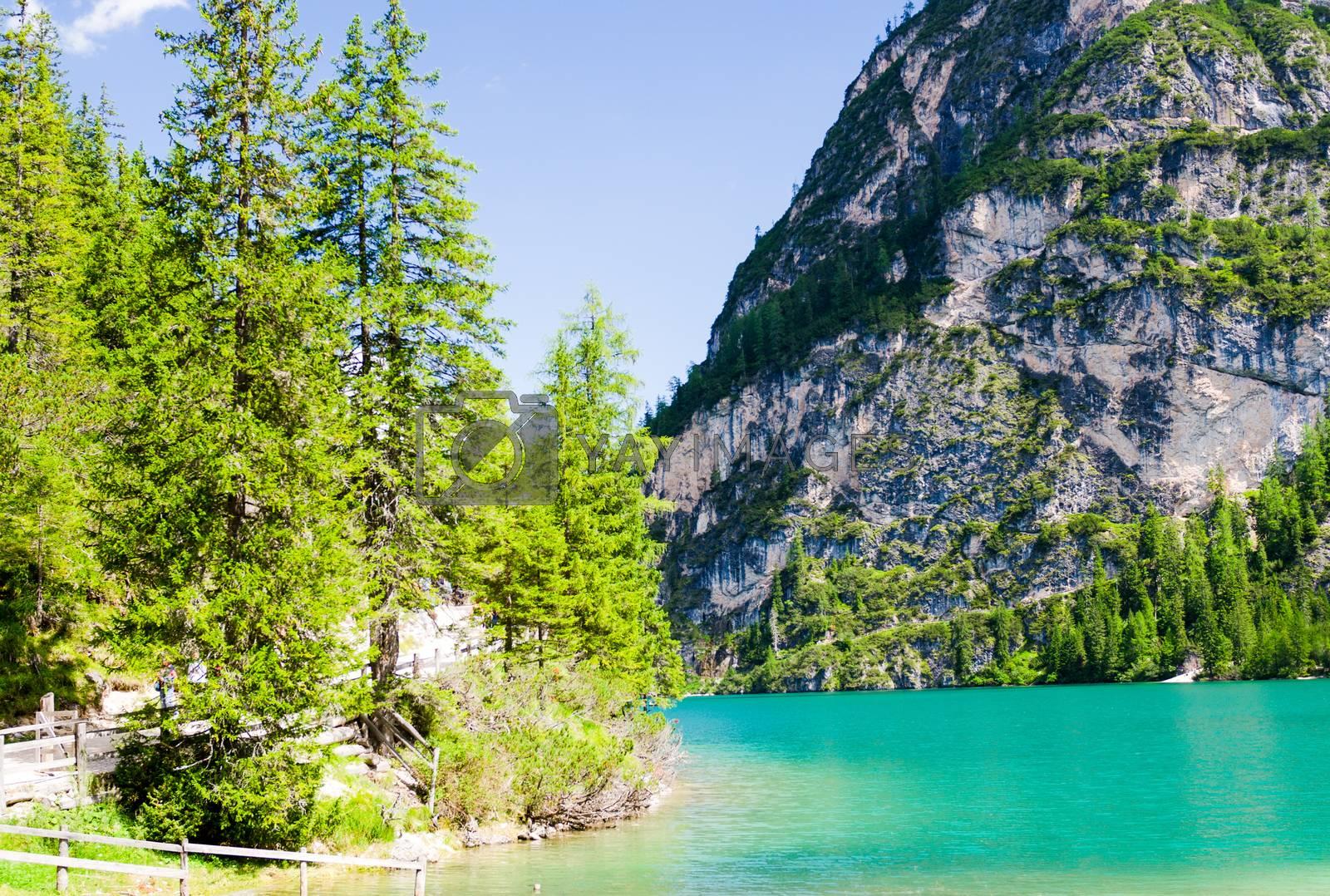 Wonderful waters of Braies lake on a summer day - Italian Alps.