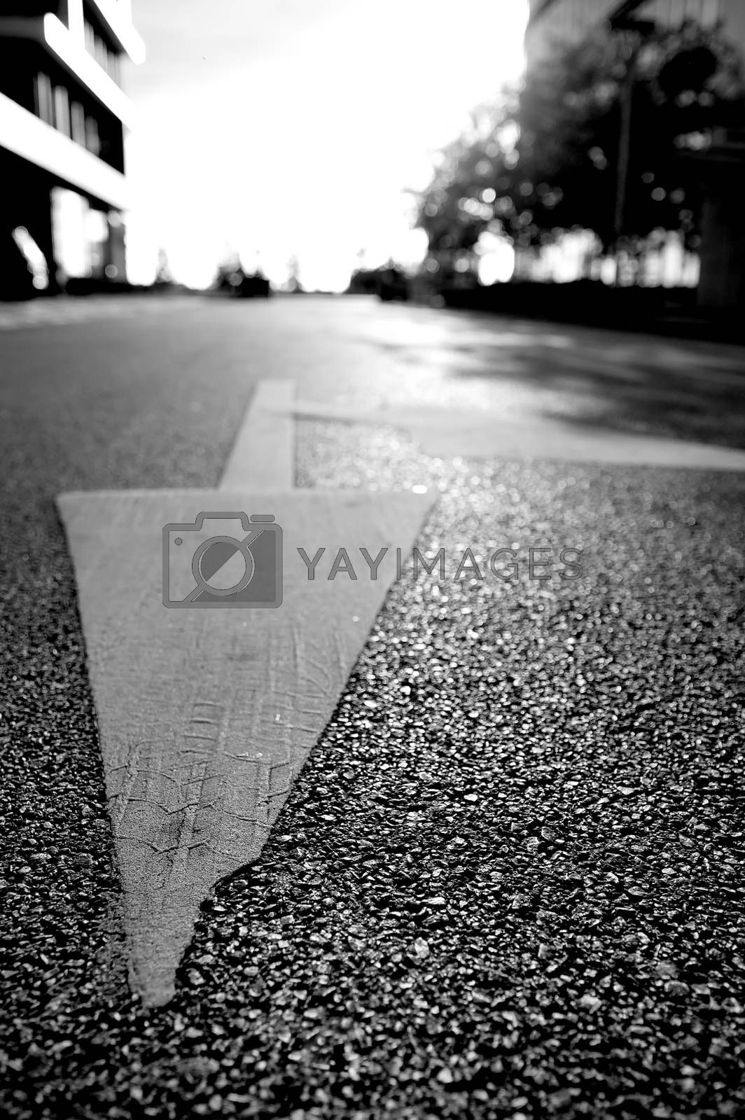 Arrow sign on the road