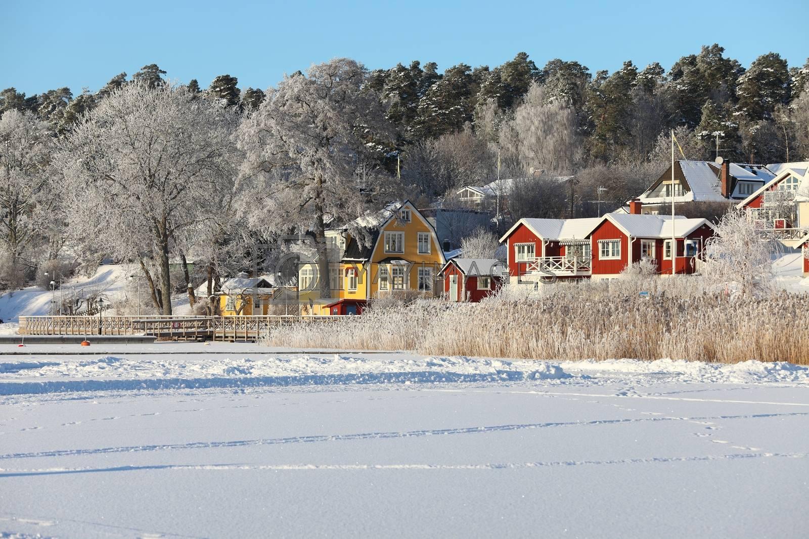 Winter landscape with frozen lake