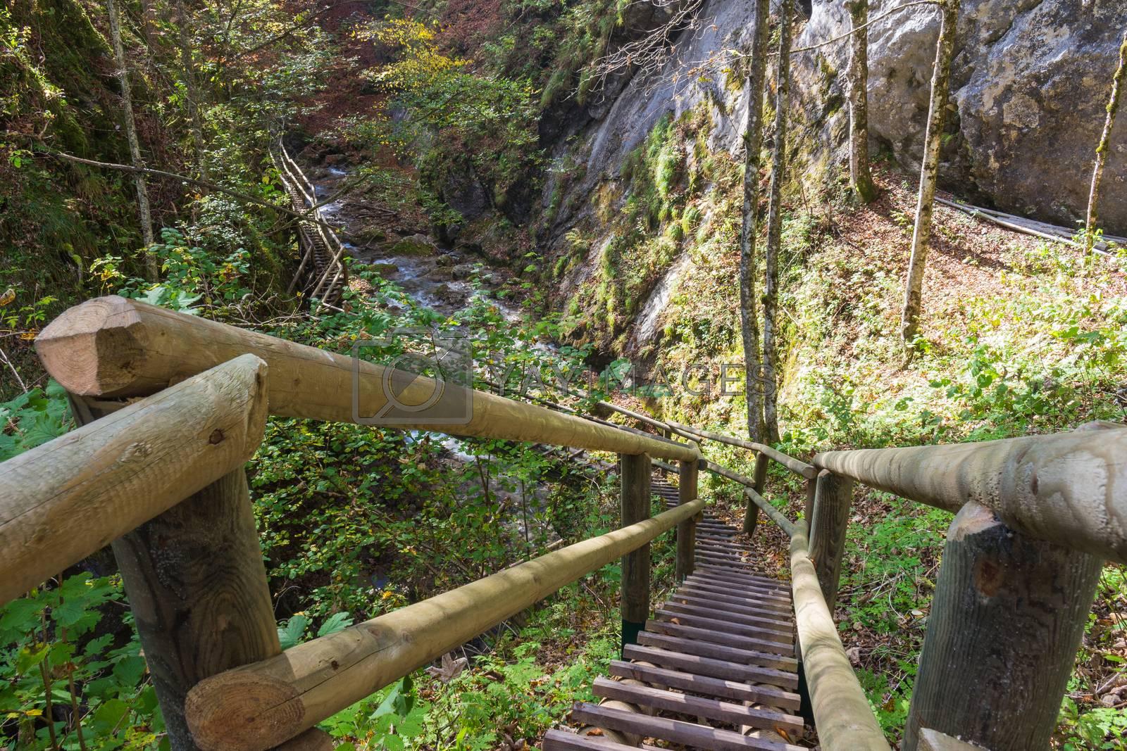Barenschutzklamm - gorge near Mixnitz in Austria