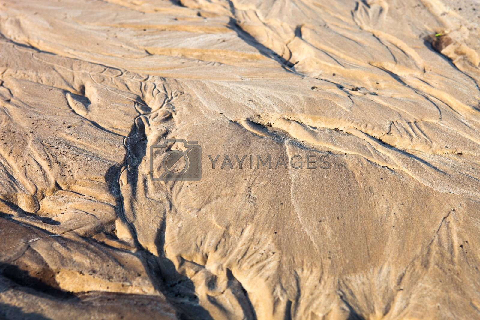 Sand surface after the rain with the relief formed by water currents.