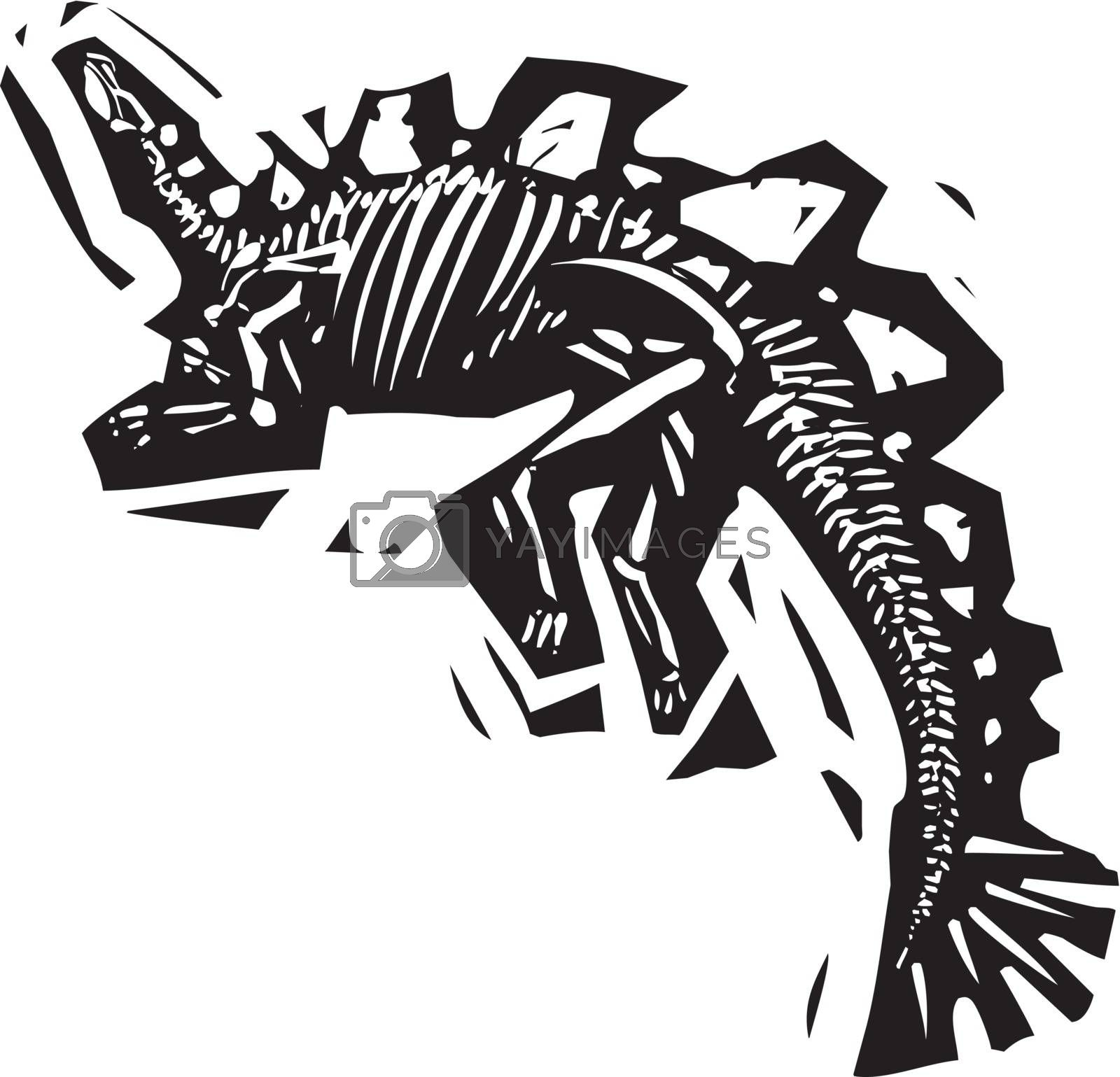 Woodcut style image of a fossil of a armored Stegosaurus with spikes