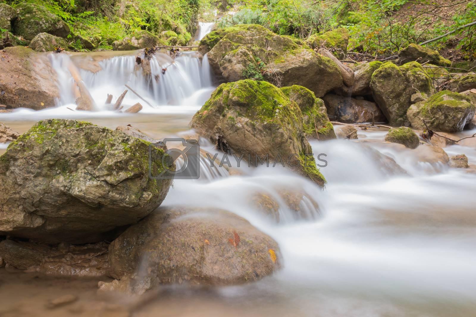 Mountain stream by Robert Boss