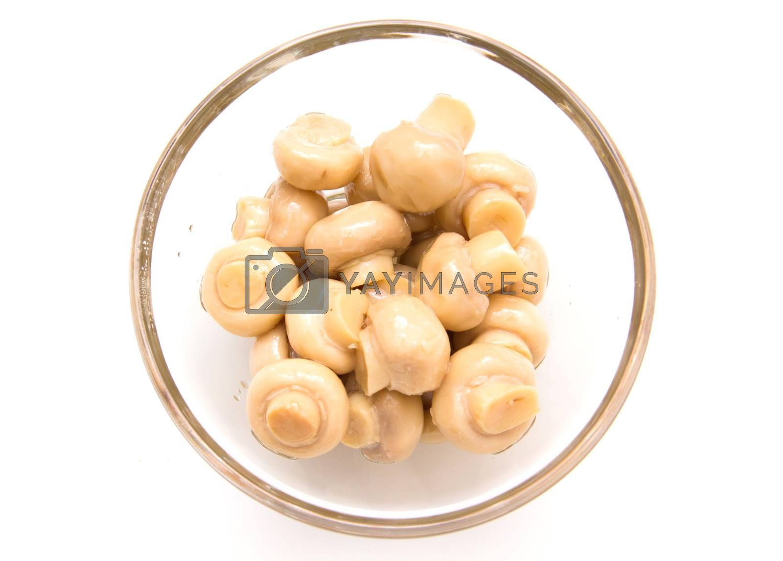 Mushrooms in glass bowl on white background seen from above